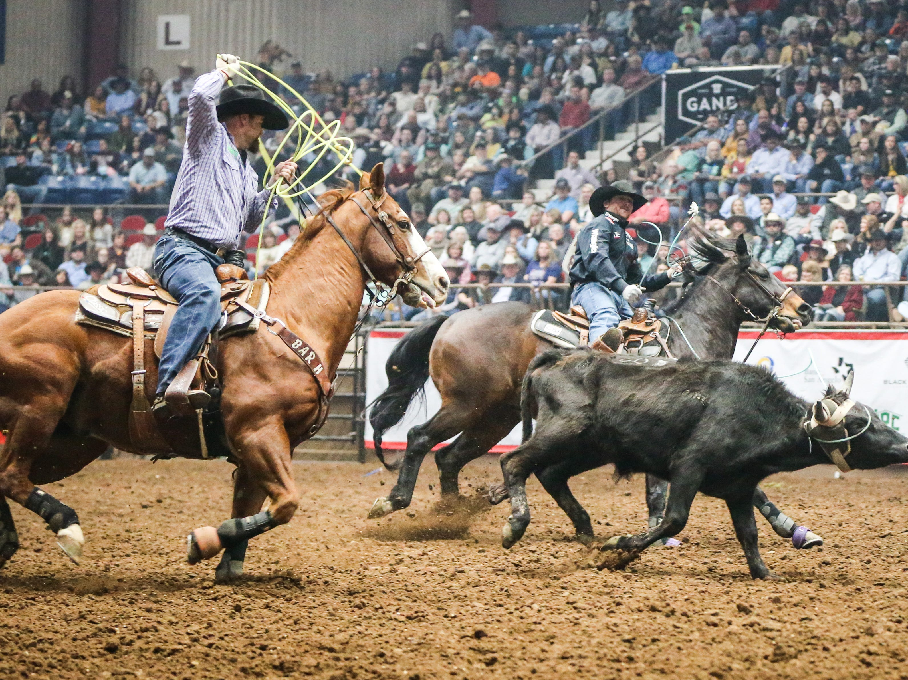 Tyler Wade and Ryan Motes team rope during Cinch Chute Out Saturday, Feb. 16, 2019, at Foster Communications Coliseum.