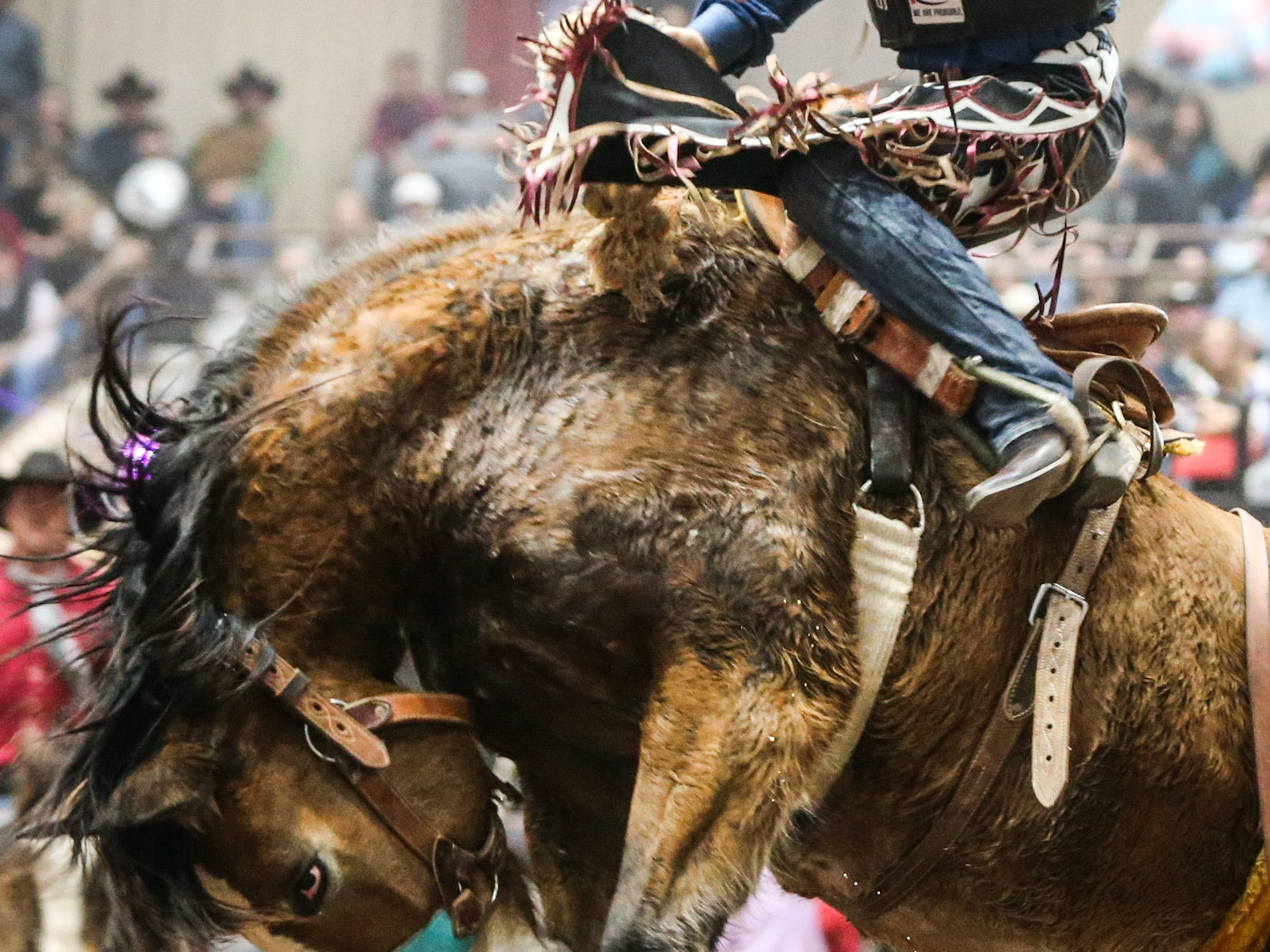 Jacob Crawley rides Watch the Night during Cinch Chute Out Saturday, Feb. 16, 2019, at Foster Communications Coliseum.