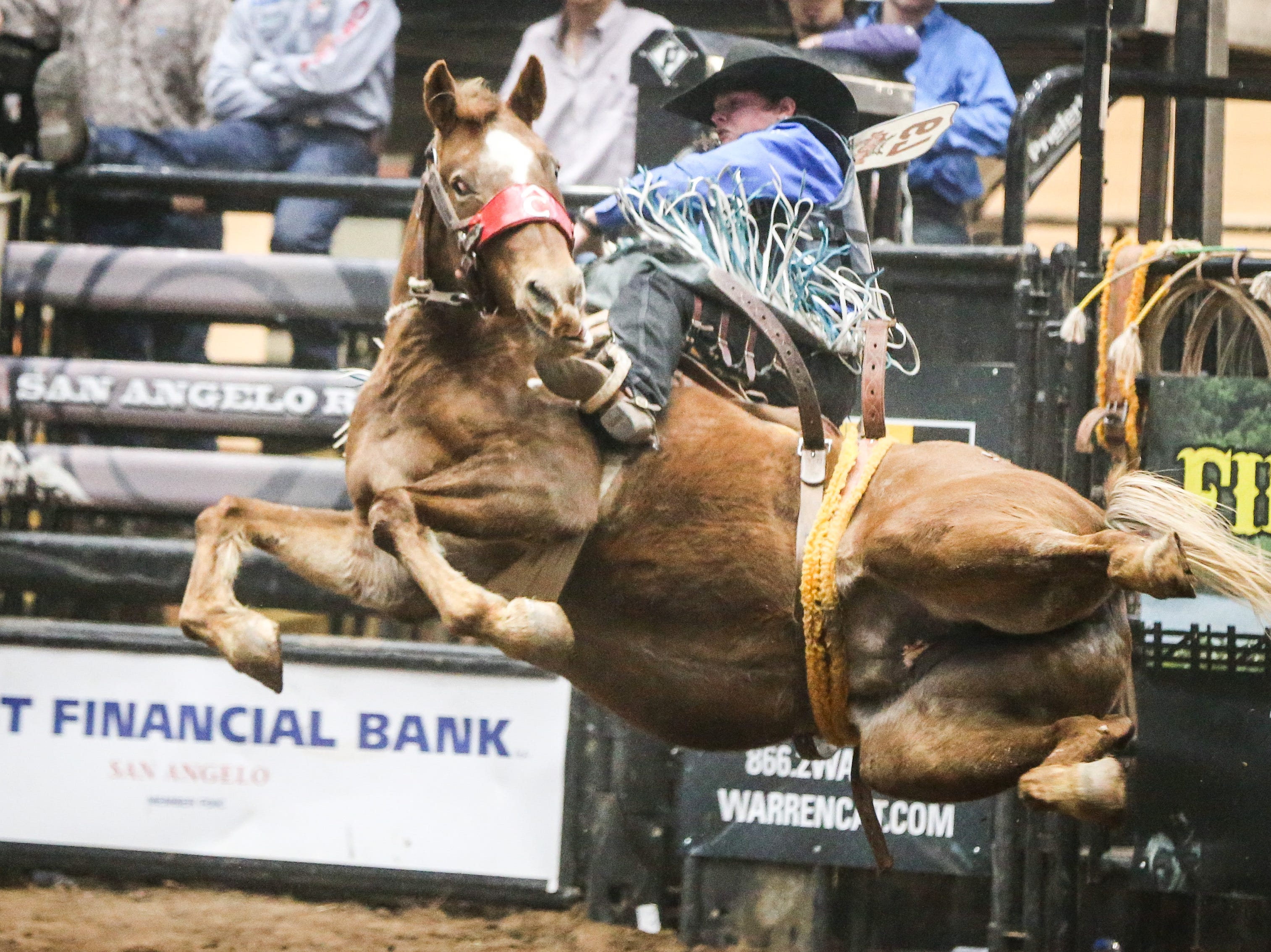 Ryder Wright and Sweet Maria fall on the last jump in their 8-second ride during Cinch Chute Out Saturday, Feb. 16, 2019, at Foster Communications Coliseum.