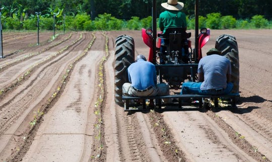 Florida A&M University begins two-day farming series on Sunday