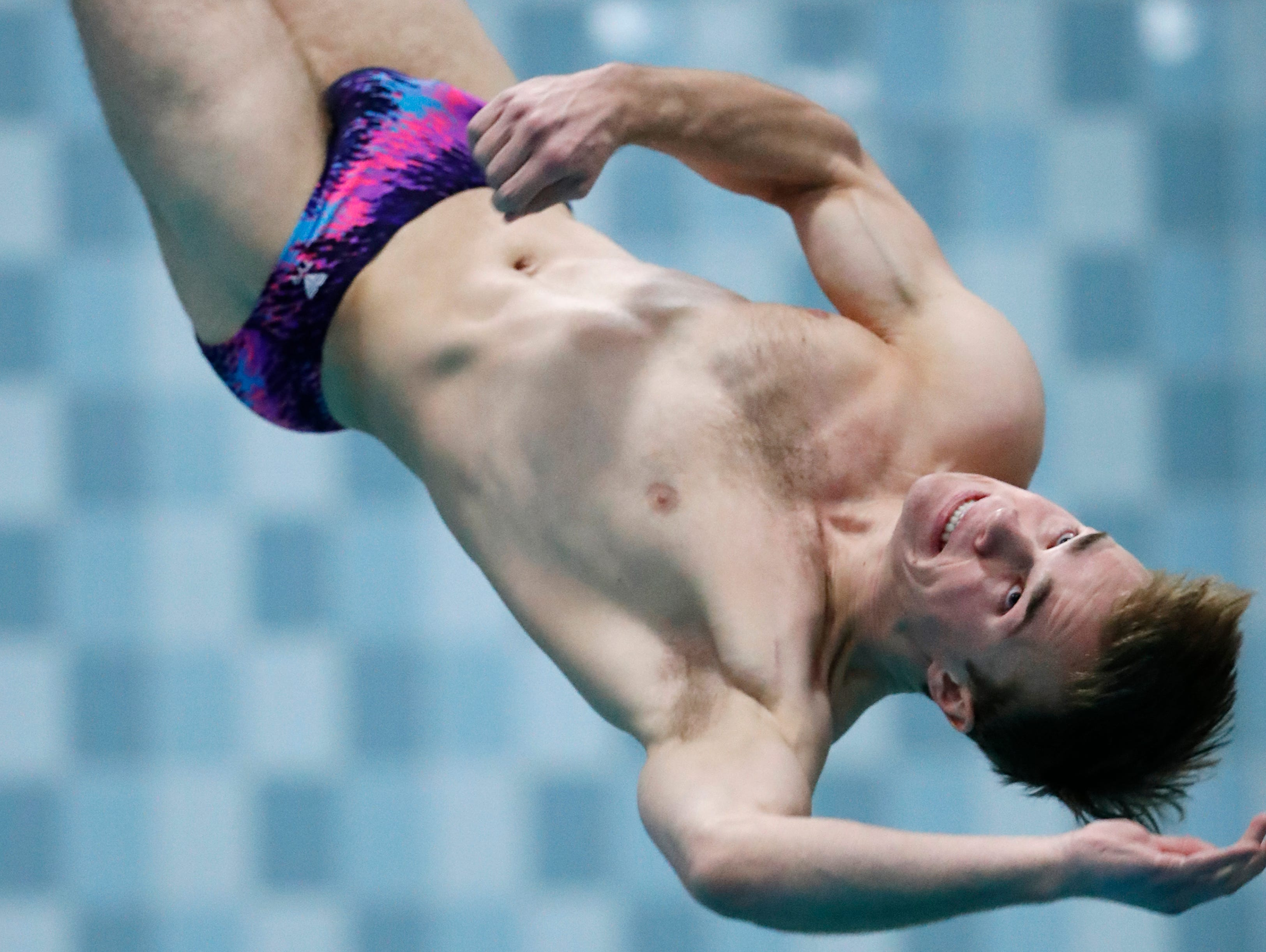 Franklin's Jared Kleczka dives during the Division 1 2019 State Boys Swimming and Diving Championships Saturday, Feb. 16, 2019, at the UW Natatorium in Madison, Wis.Danny Damiani/USA TODAY NETWORK-Wisconsin