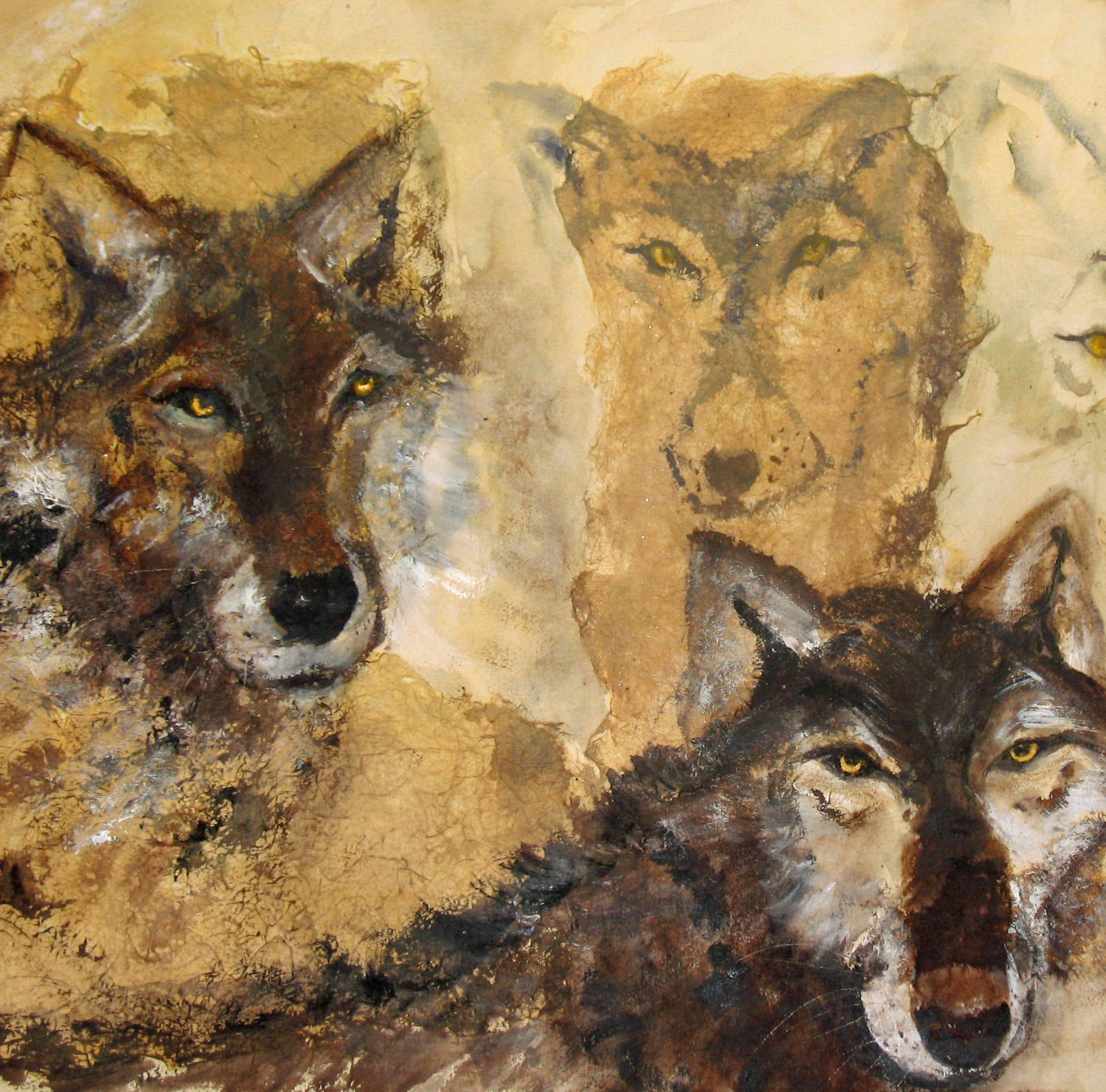 Nature Journal: Timber Wolf
