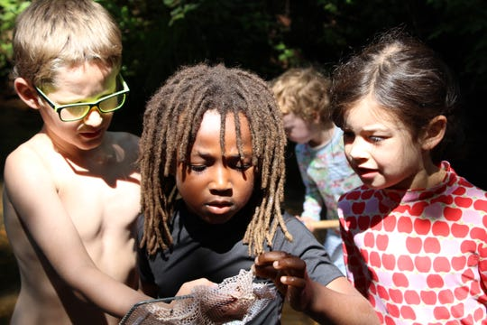 N.C. Arboretum's Discovery Camps gets kids out into nature to explore.
