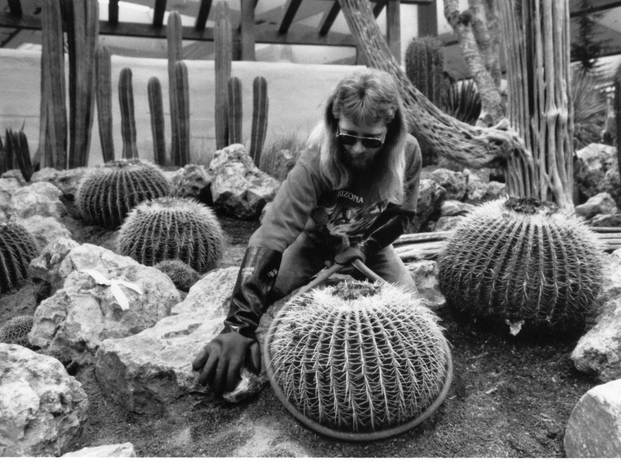 The Cactus Man works on his exhibit at the 1992 Philadelphia Flower Show.