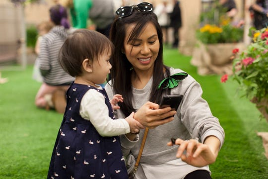 Interact with live butterflies at the Philadelphia Flower Show.