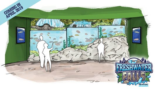 Cross sections of waterfalls will show what lies beneath in a new Freshwater Falls exhibit opening at the Newport Aquarium this spring