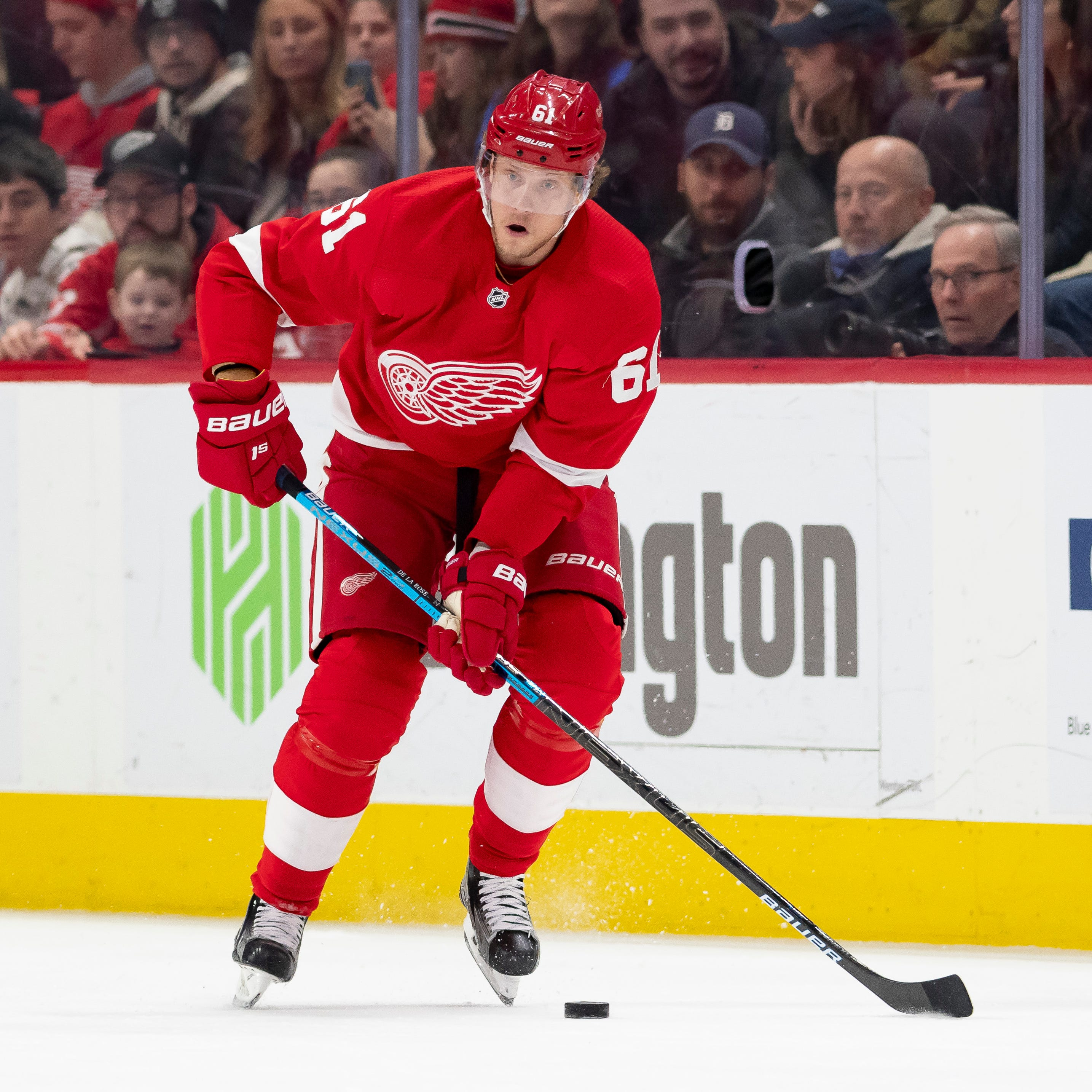 Waiver acquisition de la Rose has been shrewd Red Wings pickup