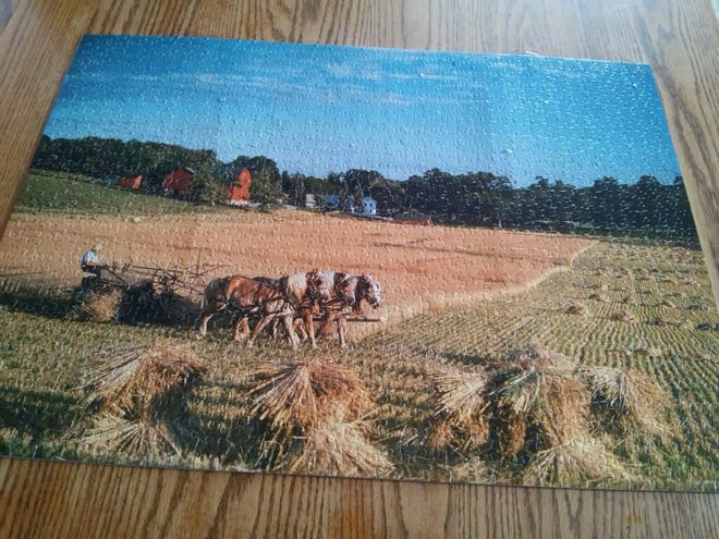 Eichers finish 1,000 piece puzzle. It is glued and will be hung in Kevin's room.