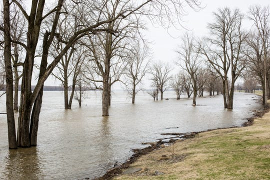 Waters from the Mississippi River overflows into parts of the Mississippi River Greenbelt Park on Feb. 18.