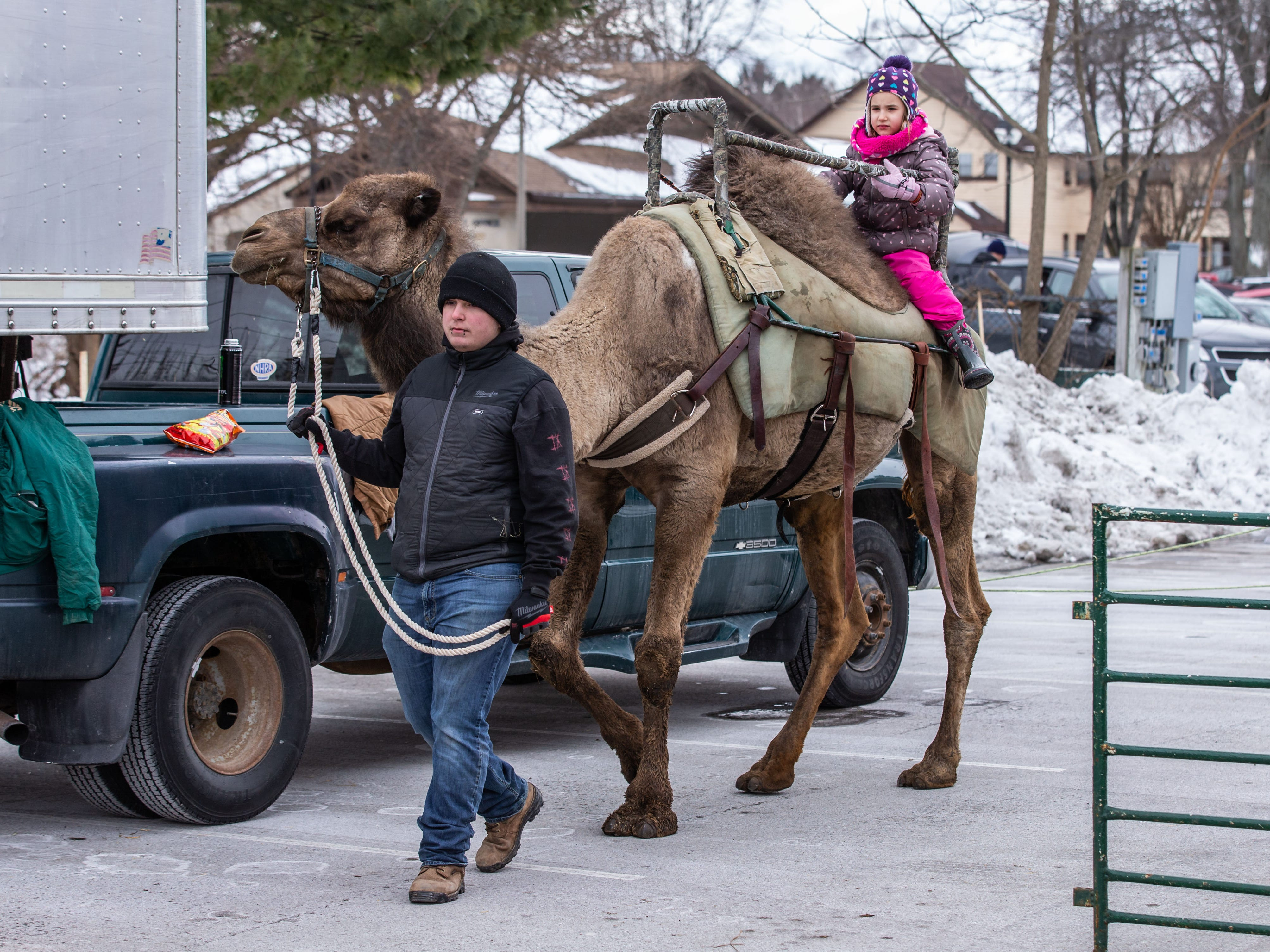 Six-year-old Leighana Rakun of Hingham rides a camel during Cedarburg's Winter Festival on Saturday, Feb. 16, 2019. The annual event features a grand parade, bed racing, ice carving, camel rides, a petting zoo, food, games and more.