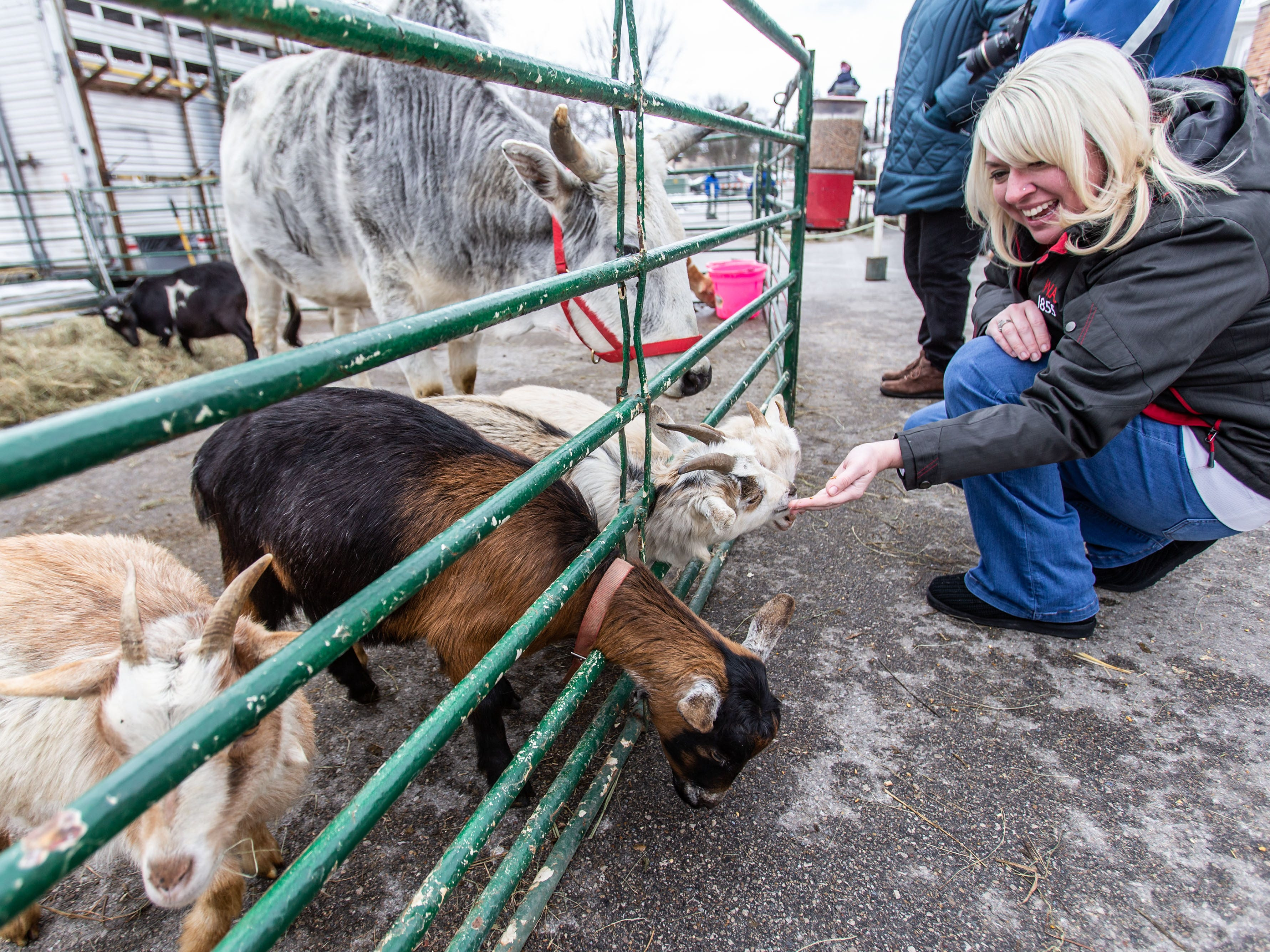 Andrea Shoop of Saukville makes some new friends at the petting zoo during Cedarburg's Winter Festival on Saturday, Feb. 16, 2019. The annual event features a grand parade, bed racing, ice carving, camel rides, a petting zoo, food, games and more.