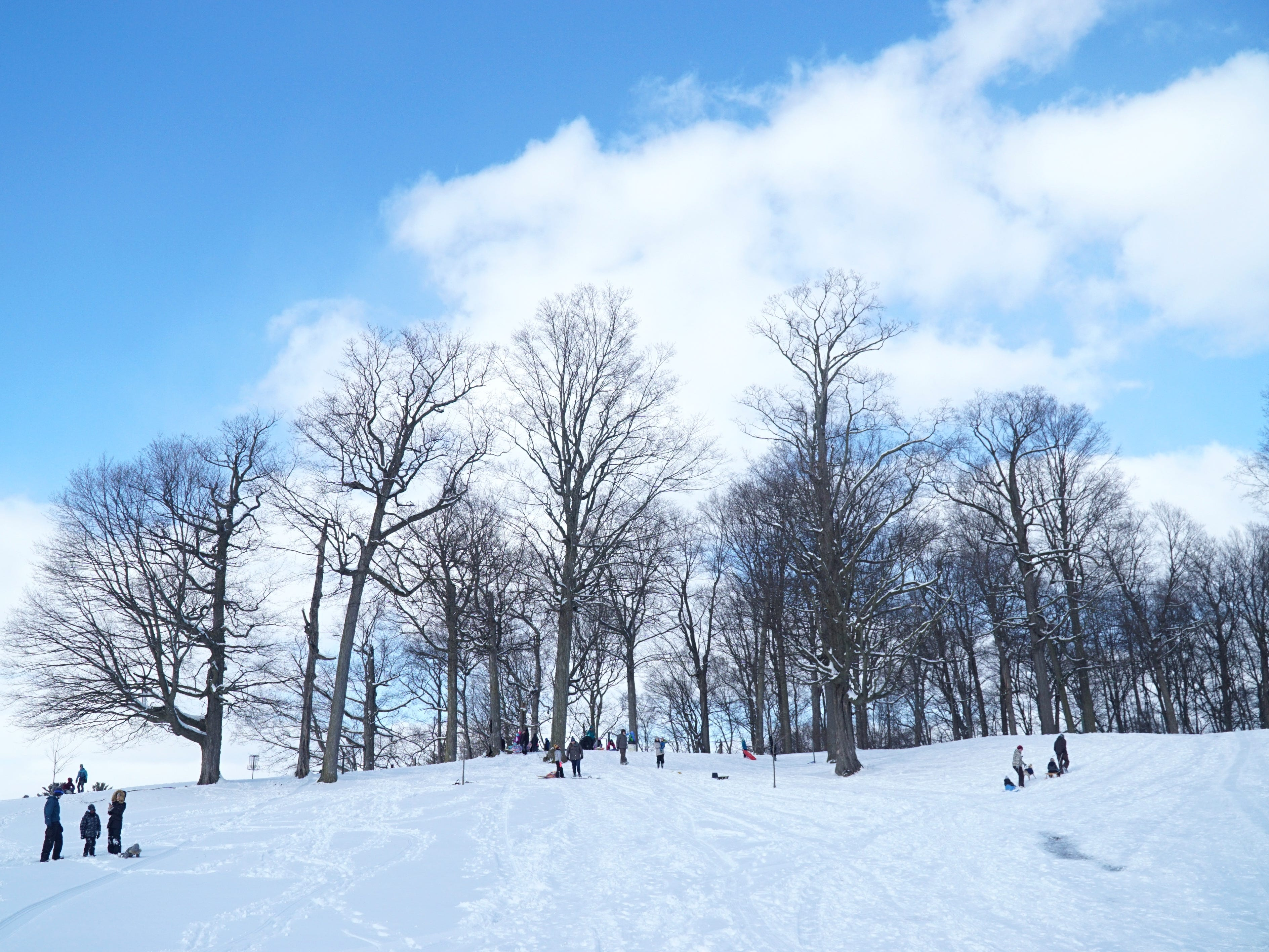 The hill at Hines Park's Cass Benton Recreation Area was very busy on Feb. 18 with plenty of sledders and snow-boarders.