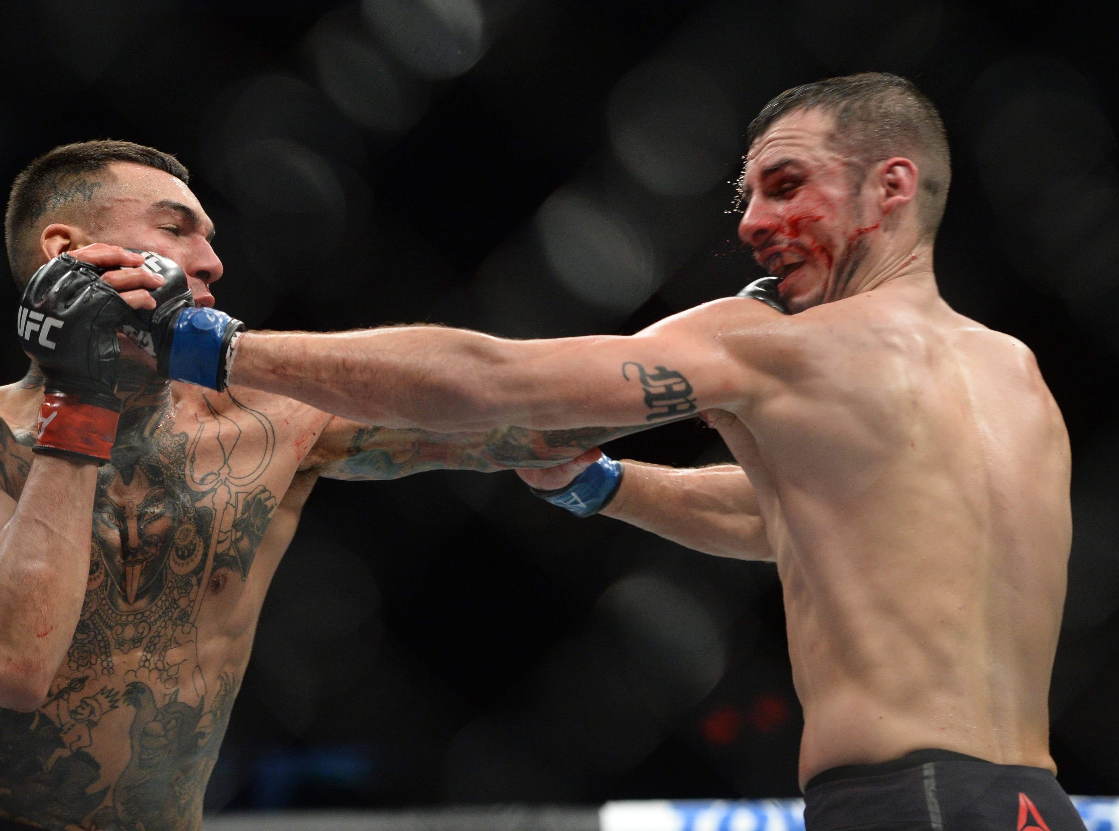 Feb 17, 2019; Phoenix, AZ, USA; Andre Fili (red) and Myles Jury (blue) fight during their featherweight bout during UFC Fight Night at Talking Stick Resort Arena. Fili won via unanimous decision. Mandatory Credit: Joe Camporeale-USA TODAY Sports