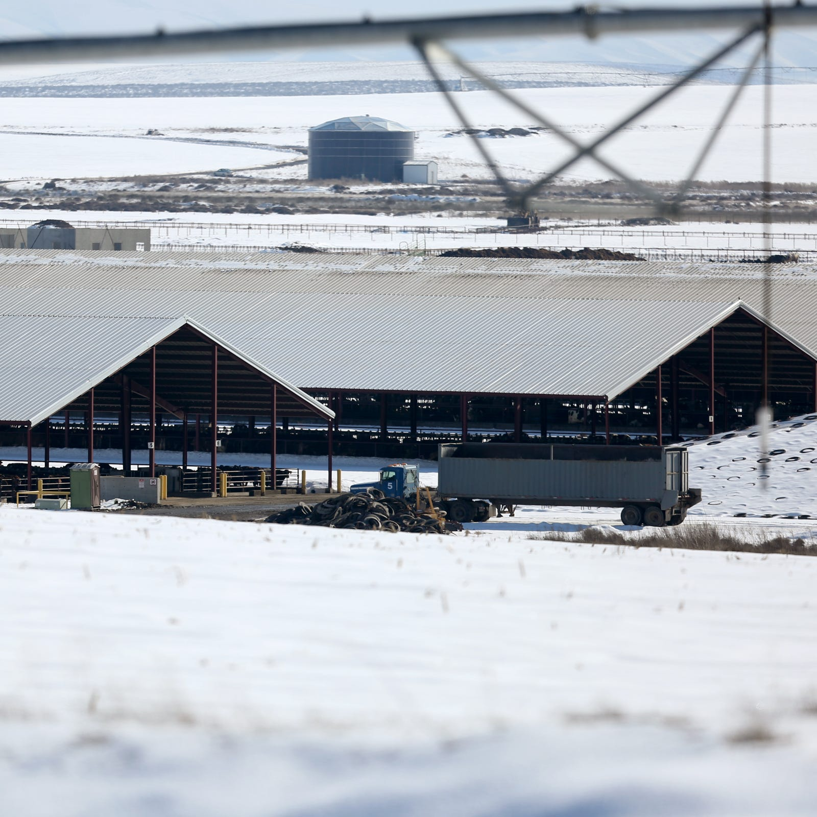 Calls for megadairy moratorium increase as new owner takes over troubled Lost Valley Farm