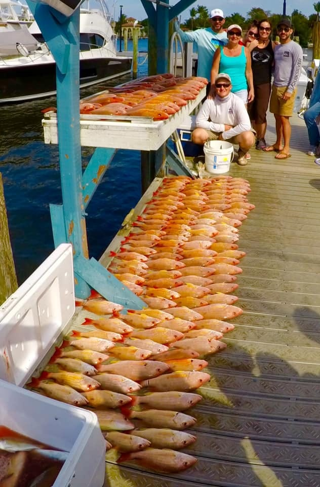 All of the lane snapper. It was quite a bite aboard the Safari I party boat out of Pirates Cove Resort and Marina in Port Salerno Sunday.