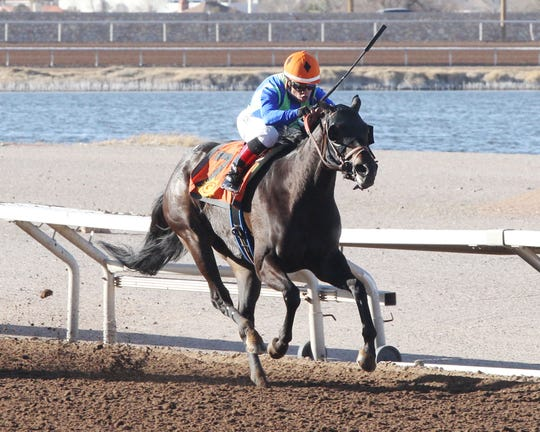 Fast Gator won the La Coneja Stakes on Sunday at Sunland Park Racetrack & Casino for El Paso owners Kirk and Judy Robison.