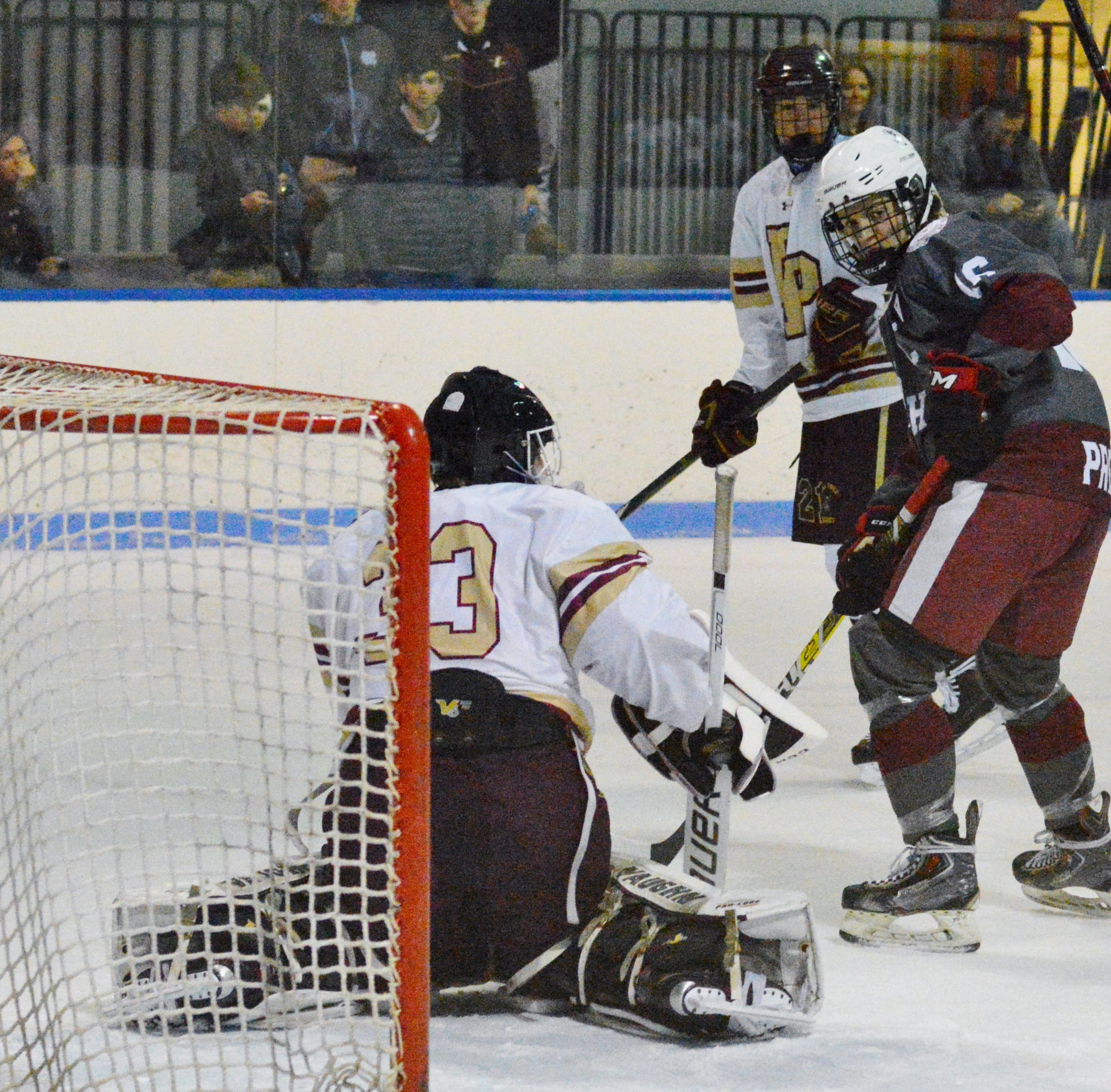 Hockey: Vote for the lohud player of the week