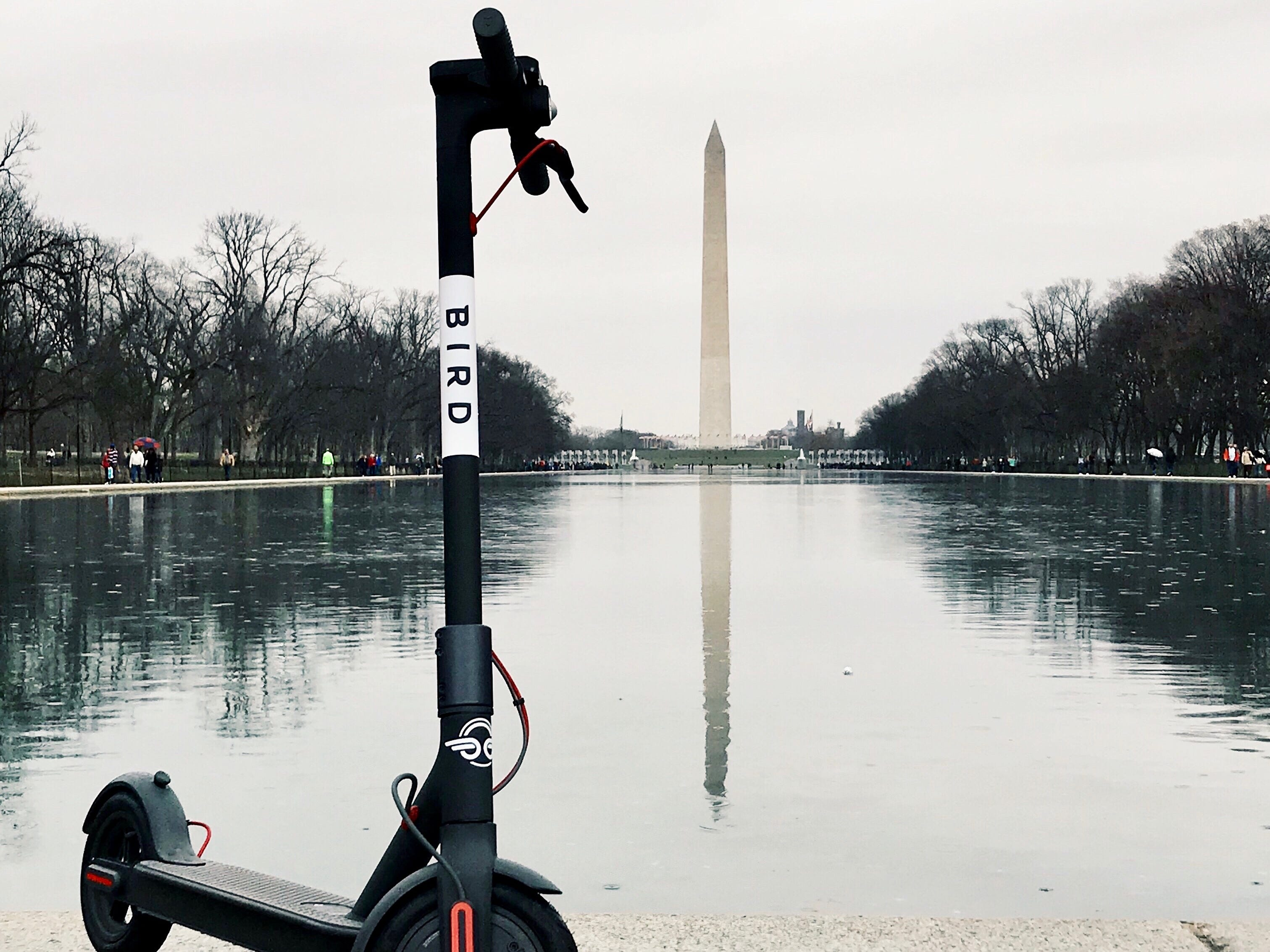 Already home to a popular bike-share program, Washington, D.C., has gone all-in for scooters.