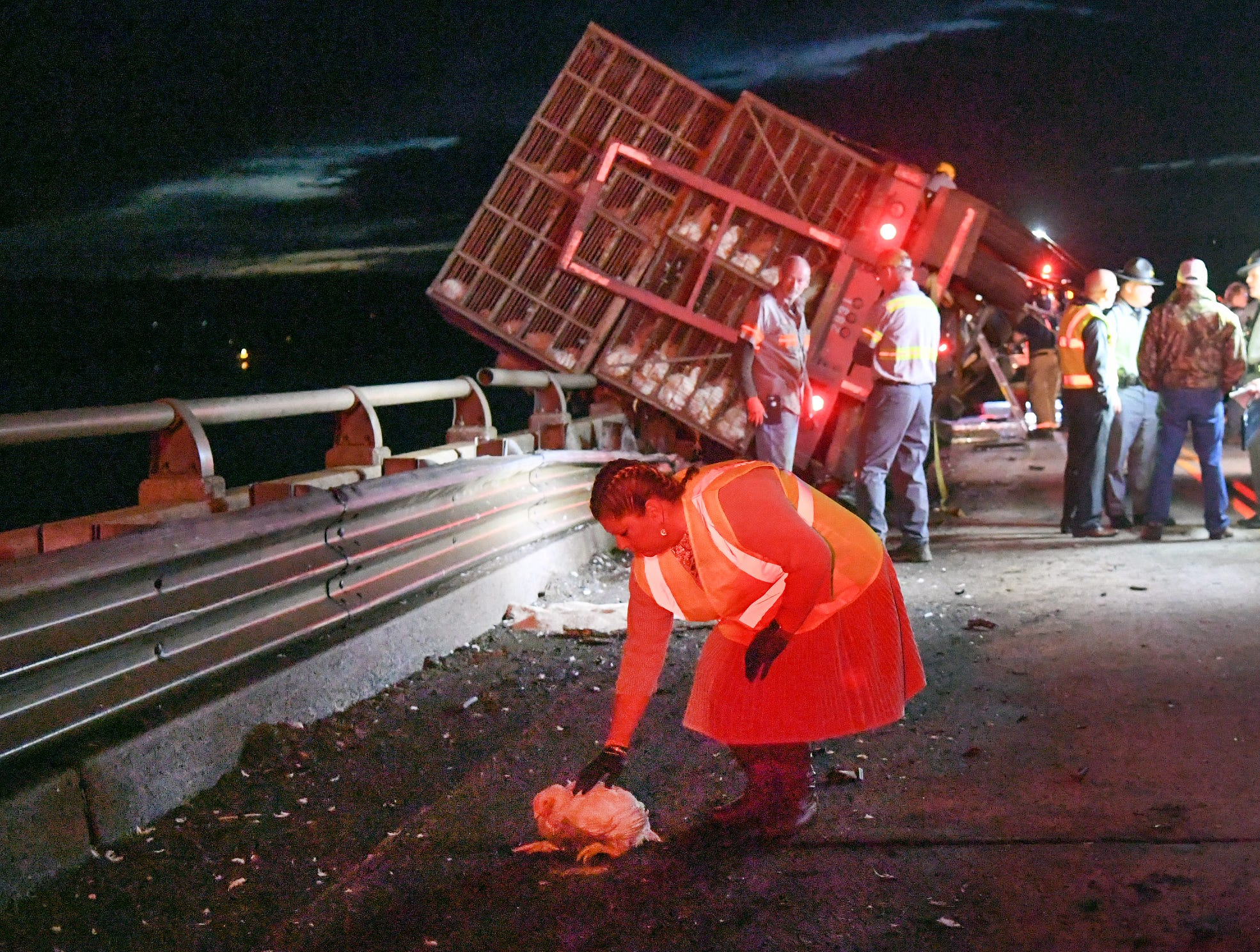 Melissa Huff of Medshore pets the feathers of a live chicken on the State Highway 24 bridge in Anderson on Monday, Feb. 18, 2019. Anderson County firemen, ambulance, and troopers at the scene of a tractor-trailer with cages of chickens and a sedan on a bridge over Lake Hartwell on state highway 24 in Anderson Monday evening. One person died after the Ford Taurus collided with an tractor-trailer.