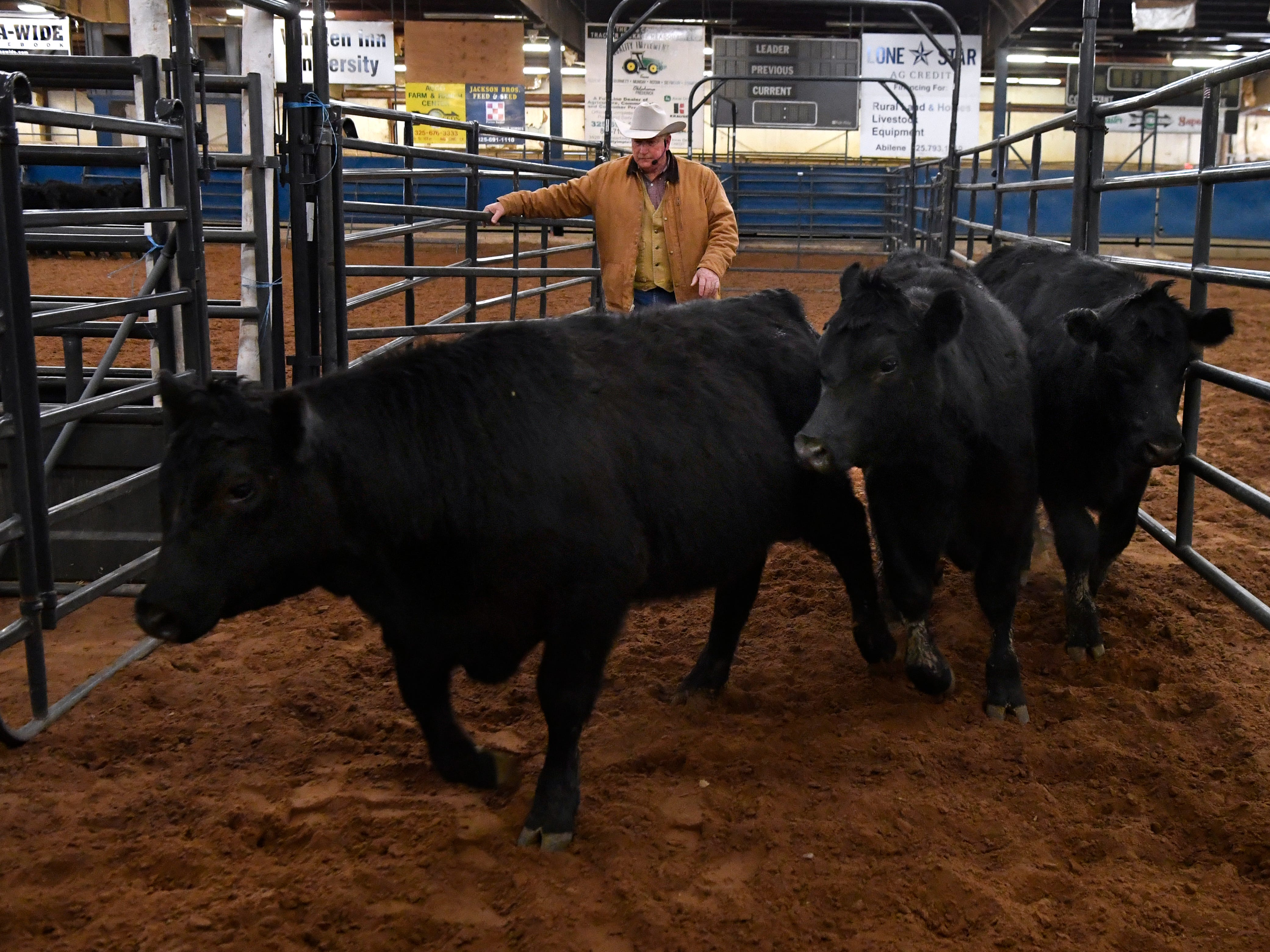Ron Gill, the associate department head and program leader for Animal Science in the Texas A&M AgriLife Extension Service, leads a clinic on cattle stockmanship and stewardship Tuesday Feb. 19, 2019. The demonstration was held in the Horse Barn at the Taylor County Expo Center, part of the 2019 Farm, Ranch & Wildlife Expo.