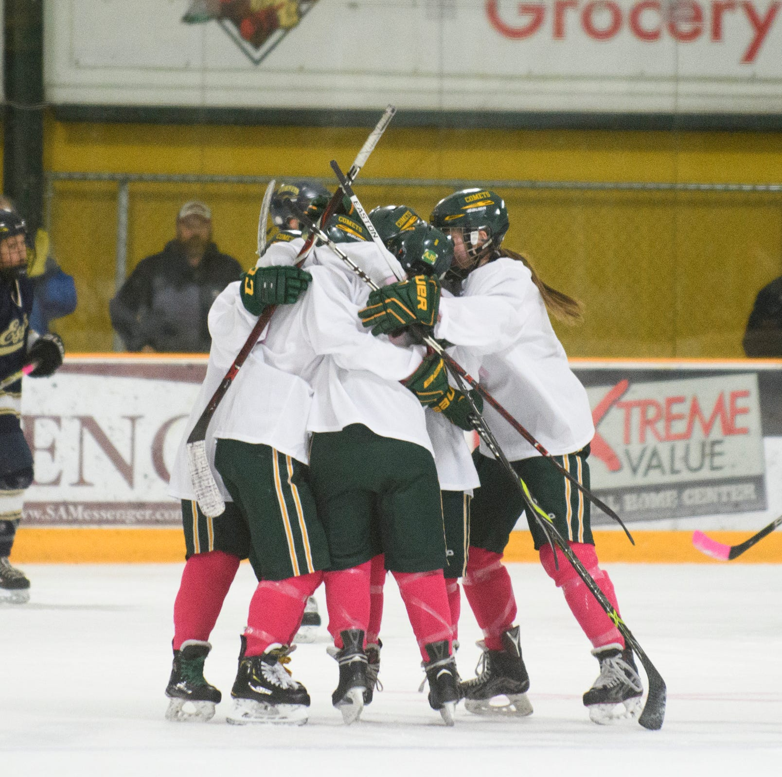 BFA celebrates a goal during the girls hockey game between the Essex Hornets and the BFA-St. Albans Comets at Collins Perley Sports Complex on Monday night February 18, 2019 in St. Albans, Vermont.