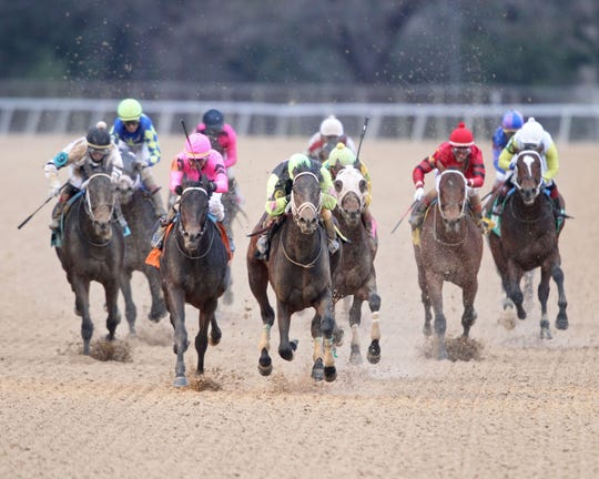 Super Steed, center, leads the field as he races to victory in the $500,000 Southwest Stakes Monday at Oaklawn Park in Hot Springs, Arkansas. Jockey Terry Thompson rides Super Steed to the win.