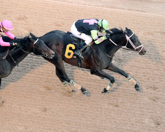 Super Steed races to victory in the $500,000 Southwest Stakes Monday at Oaklawn Park in Hot Springs, Arkansas. Jockey Terry Thompson rides Super Steed to the win.