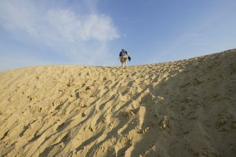 Indiana Dunes, which comprises 15,000 acres in northern Indiana along the southern shore of Lake Michigan, was recently named a national park. Here's how that happened.