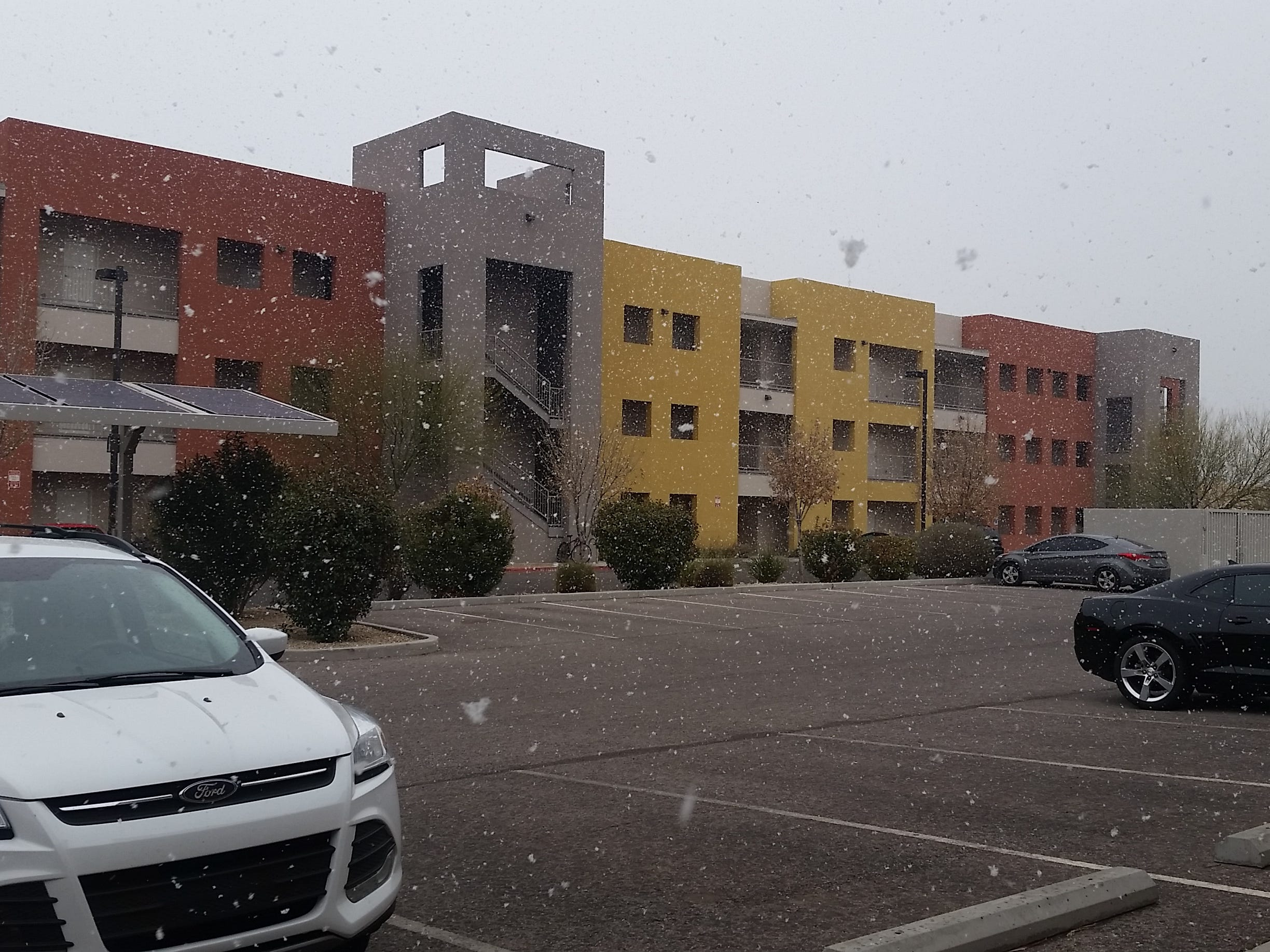 Snowflakes fall near the Las Cruces Sun-News building in downtown Las Cruces the morning of  Tuesday, Feb. 19, 2019.