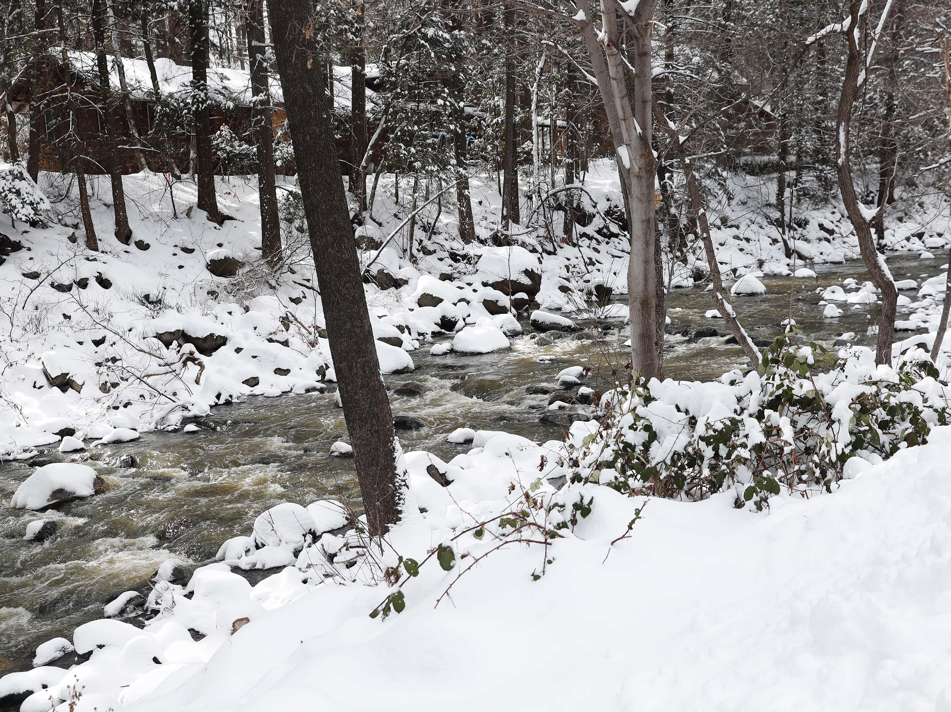 Snow covers the banks of Oak Creek in Oak Creek Canyon Feb. 18, 2019.