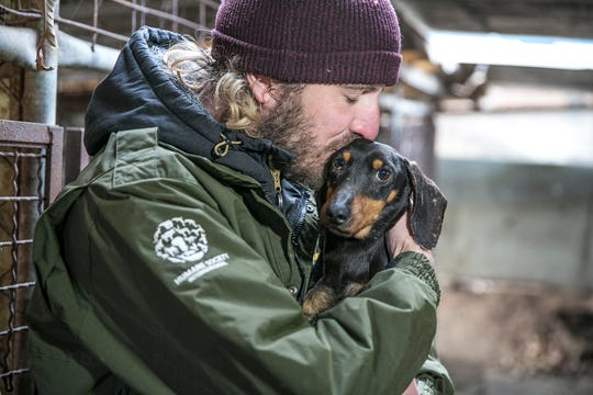 Jack Finn-Kelcey, Field Responder at HSI, kisses a dog at a dog meat farm in Hongseong-gun, South Korea, on Wednesday, February 13, 2019. The operation is part of HSIs efforts to fight the dog meat trade throughout Asia. In South Korea, the campaign includes working to raise awareness among Koreans about the plight of meat dogs being no different from the animals more and more of them are keeping as pets.