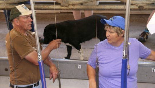 Valerie Dantoin Adamski and her husband, Rick, explain the operation of their milking parlor to those attending a field day on their farm.