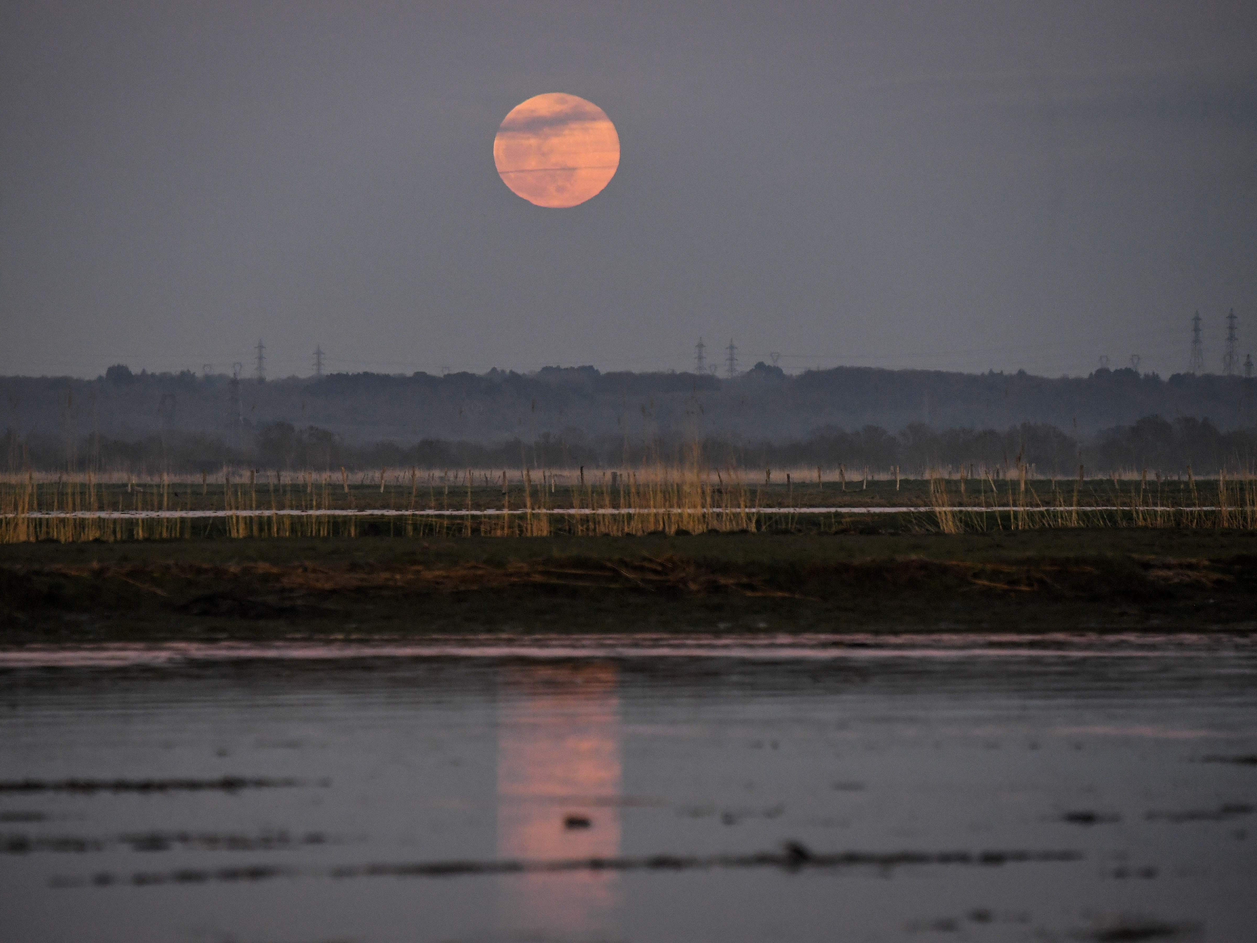 A supermoon rises over the banks of the River Loire at Lavau-sur-Loire, France on Feb. 19, 2019.