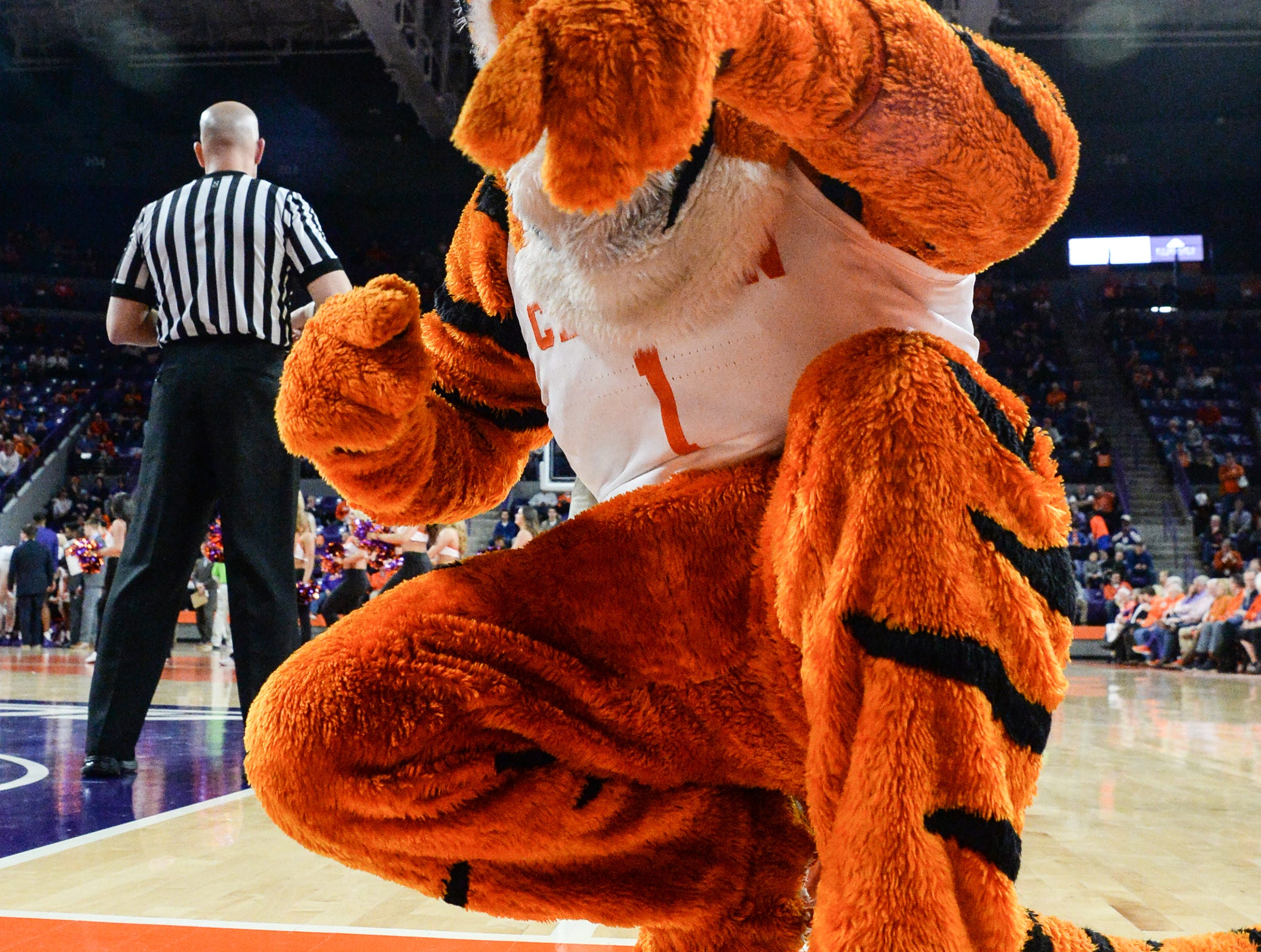Clemson Tiger poses during the first half at Littlejohn Coliseum in Clemson Tuesday, February 19, 2019.