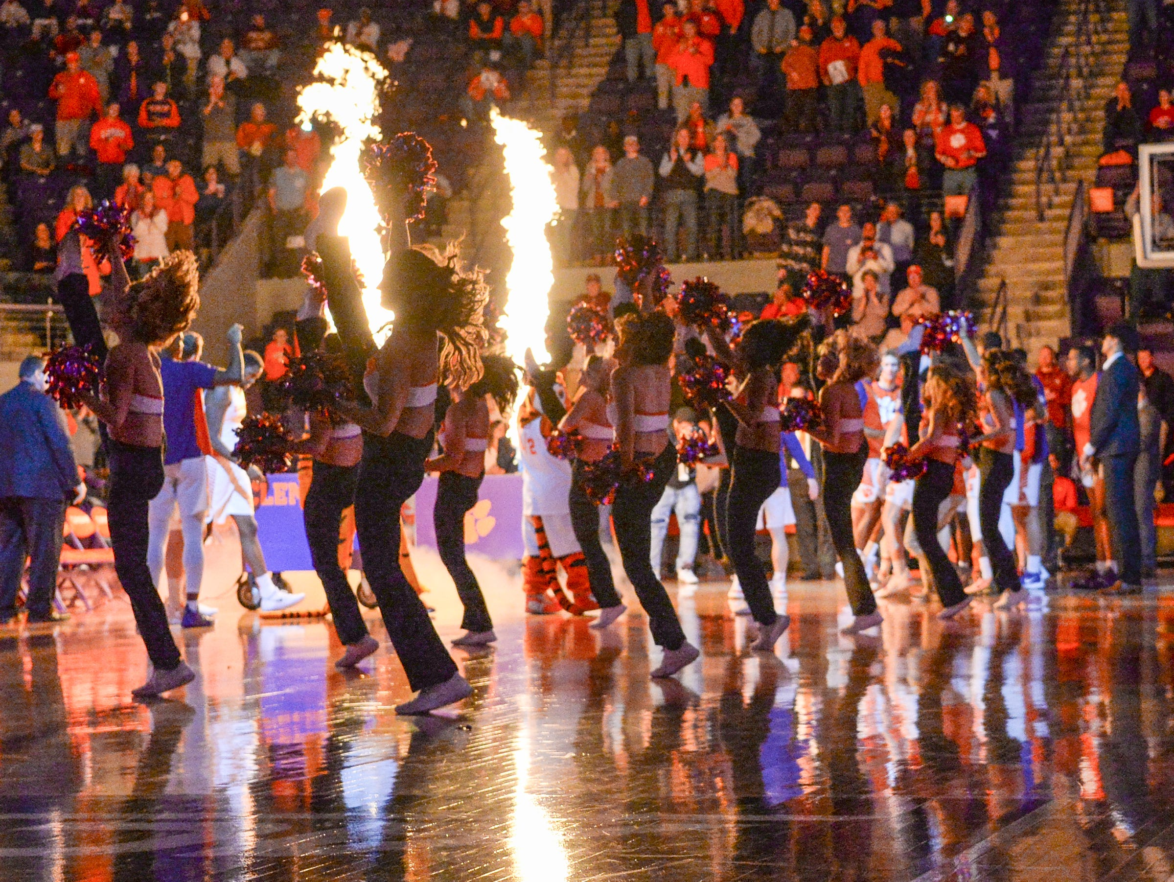 Clemson rally cats dance while players are introduced after the game against Florida State Tuesday, February 19, 2019.