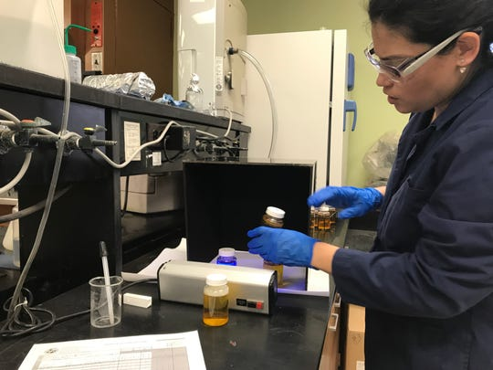 Teresa Rhodes, lab technician for the city of Battle Creek, tests water samples that were collected on Tuesday. The samples were all negative for harmful bacteria.