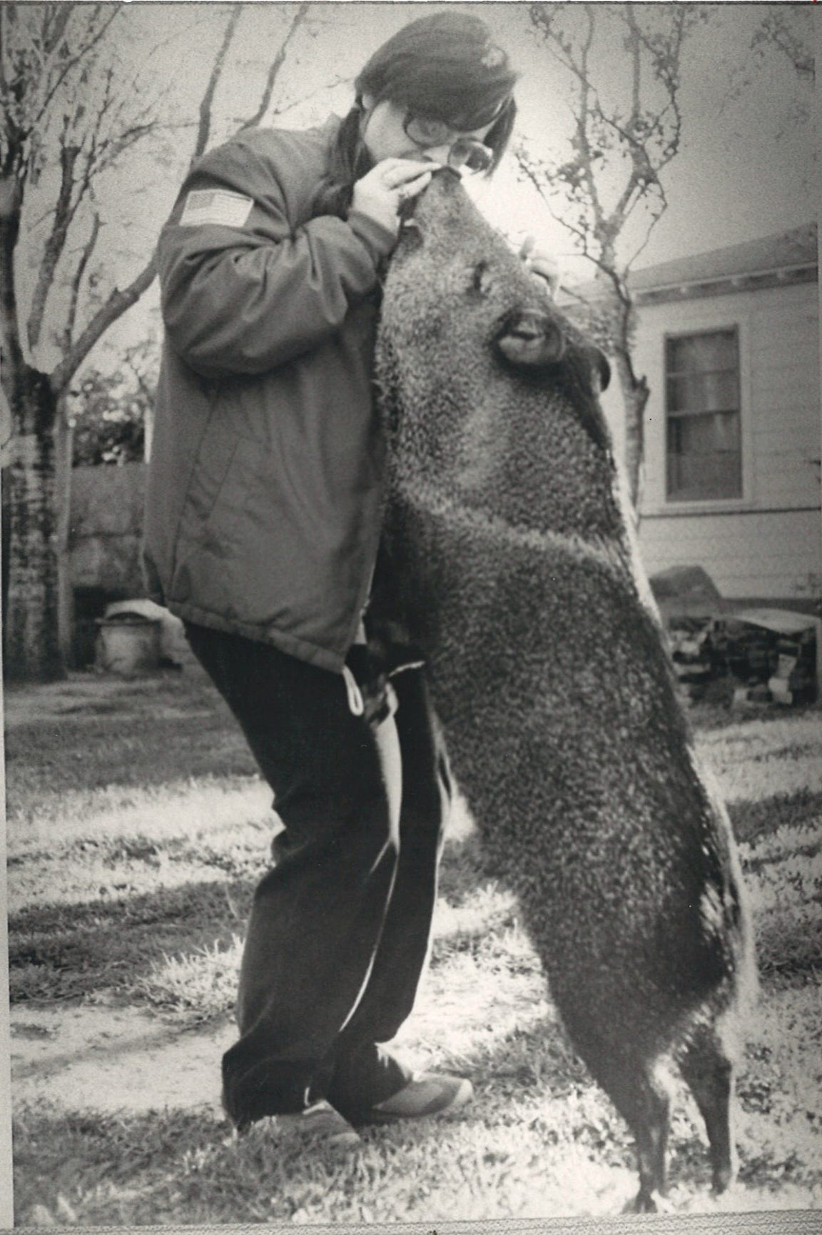 Patsy Thorne feeds Bubba a chocolate malt ball. Patsy and Buddy Thorne raised the javelina and kept him as a pet for years before he was confiscated by Texas Parks and Wildlife game wardens and released on a ranch. Bubba was never found again.