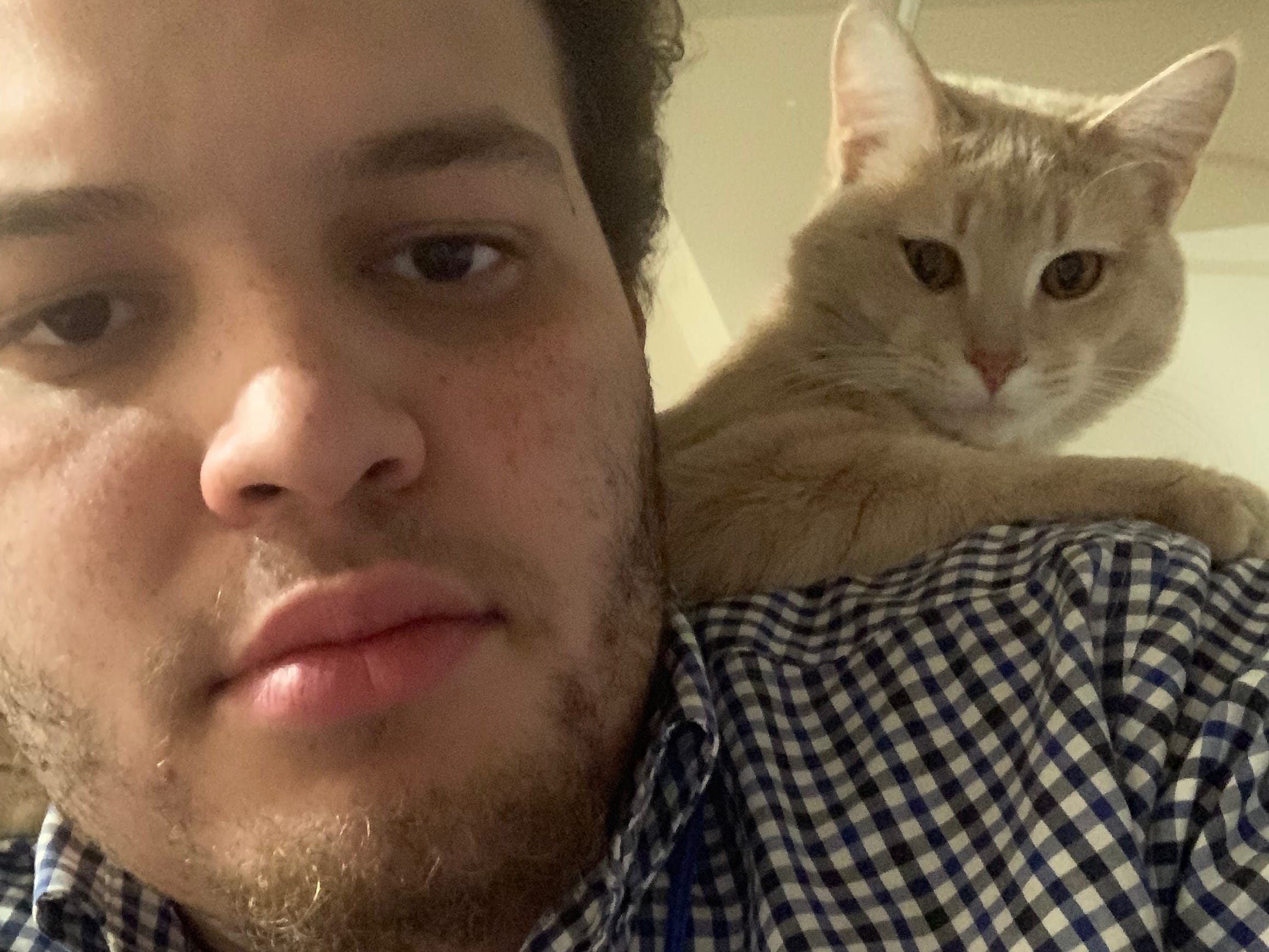 Not even a year old, Peter the cat already knows he'd rather sit on his owner Tyler Davis' shoulders while he's getting ready than stand next to him. Davis is a breaking news reporter.