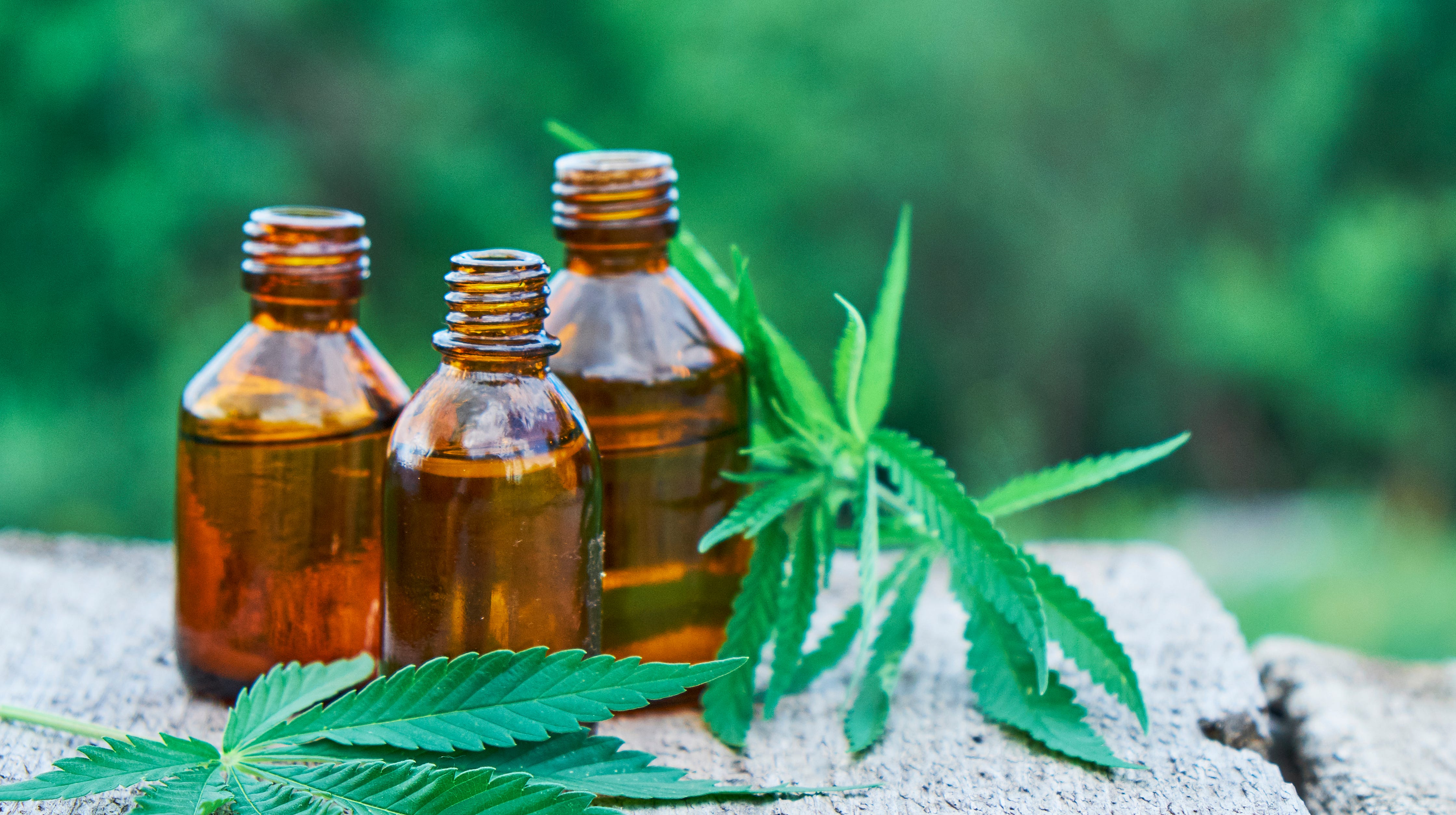 Cannabis oil extracts in jars.