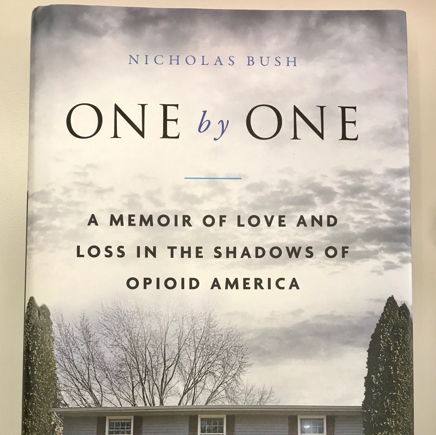 Green Bay native Nicholas Bush opens up about opioid addiction in his new memoir