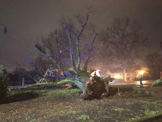 A downed tree on East Faris Road blocked the roadway and caused power outages for customers in the area Tuesday, Feb. 19, 2019.