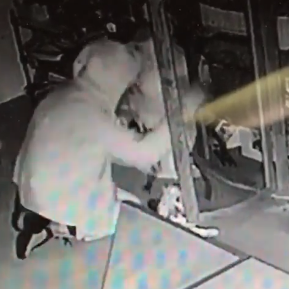 Thrift store used to raise money for animal shelter burglarized in Hattiesburg