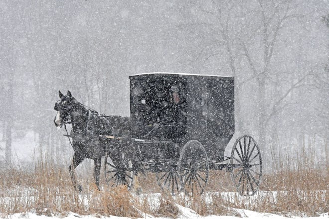 An Amish buggy is driven through the snow Wednesday morning on Ohio 603 in the northern part of Richland County. Wednesday's snow made commuting difficult for four-wheeled transportation of all varieties.