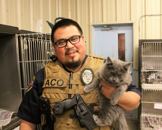 Alamogordo Animal Control Officer Carlos Juarez and Princess the fluffy gray cat.