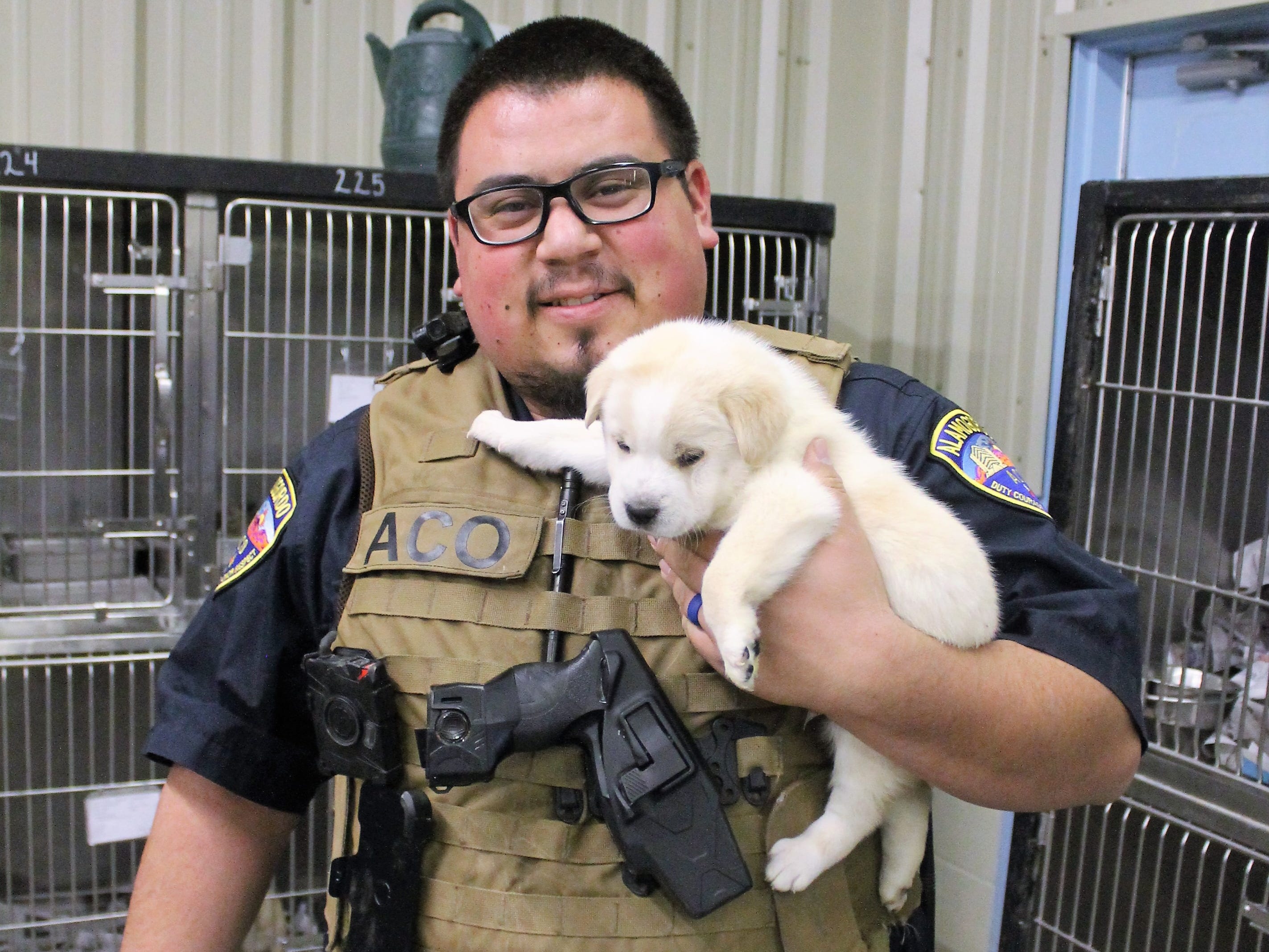 Alamogordo Animal Control Officer Carlos Juarez holds a shepherd mix puppy that is up for adoption at Alamogordo Animal Control.