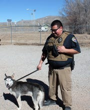 Alamogordo Animal Control Officer Carlos Juarez takes a husky mix for a walk at Alamogordo Animal Control Wednesday.