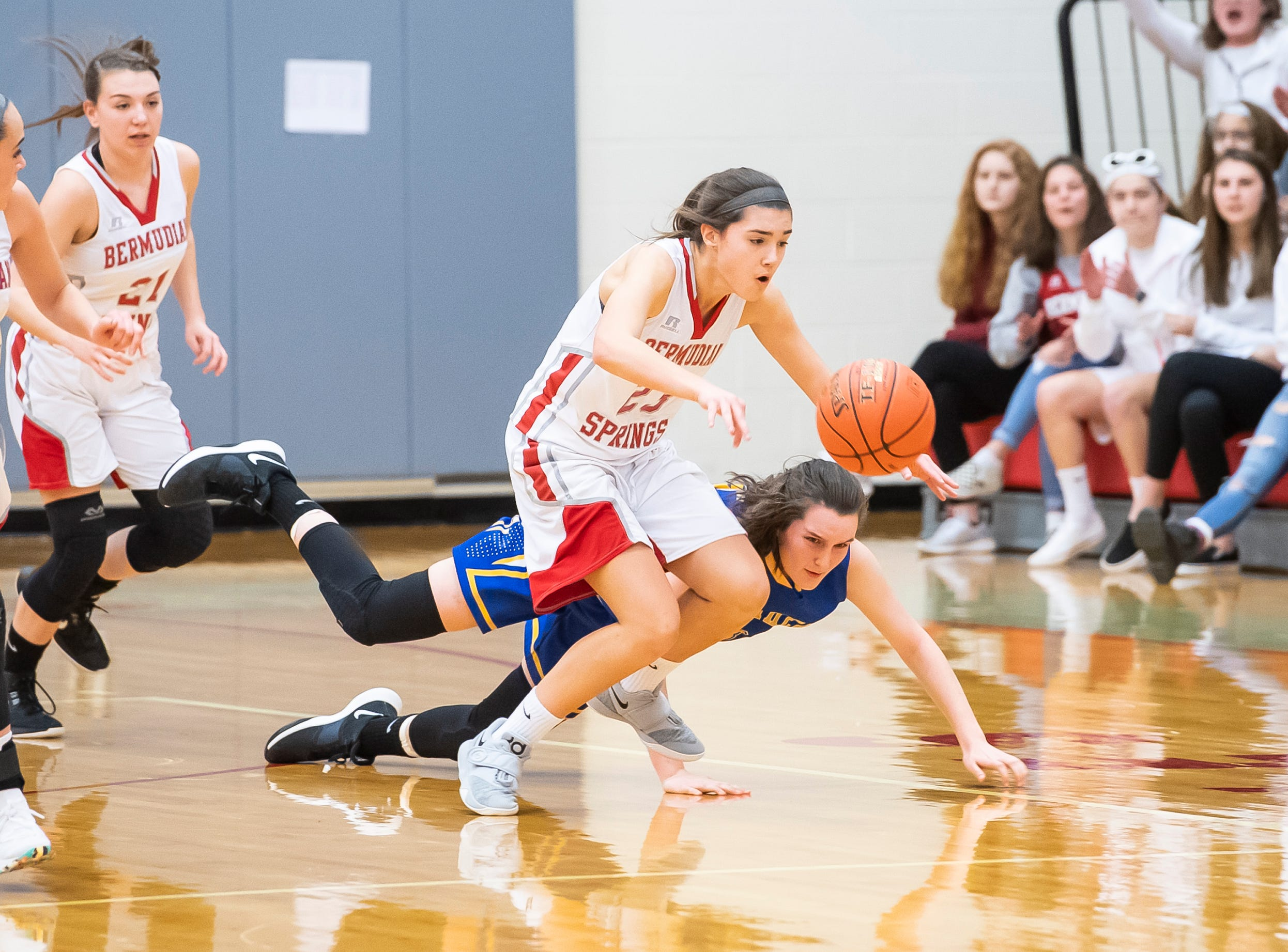 Bermudian Springs' Bailey Oehmig makes the steal on Northern Lebanon's RaeAnn Lessing in the first round of the District III 4-A playoffs Tuesday, February 19, 2019. The Eagles won 58-52.