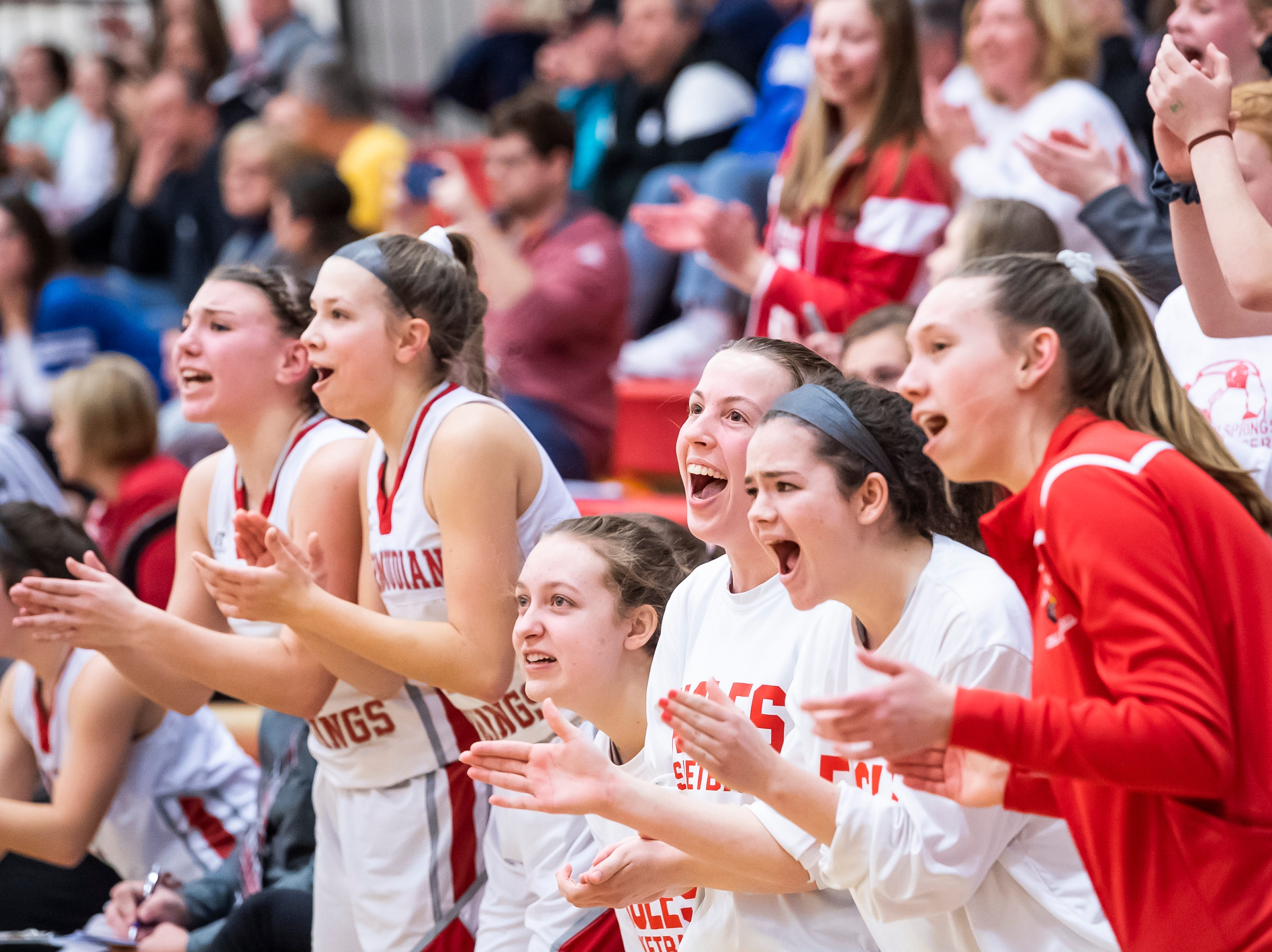 The Bermudian Springs bench cheers after Hannah Chenault drains a 3-pointer against Northern Lebanon in the first round of the District III 4-A playoffs Tuesday, February 19, 2019. The Eagles won 58-52.