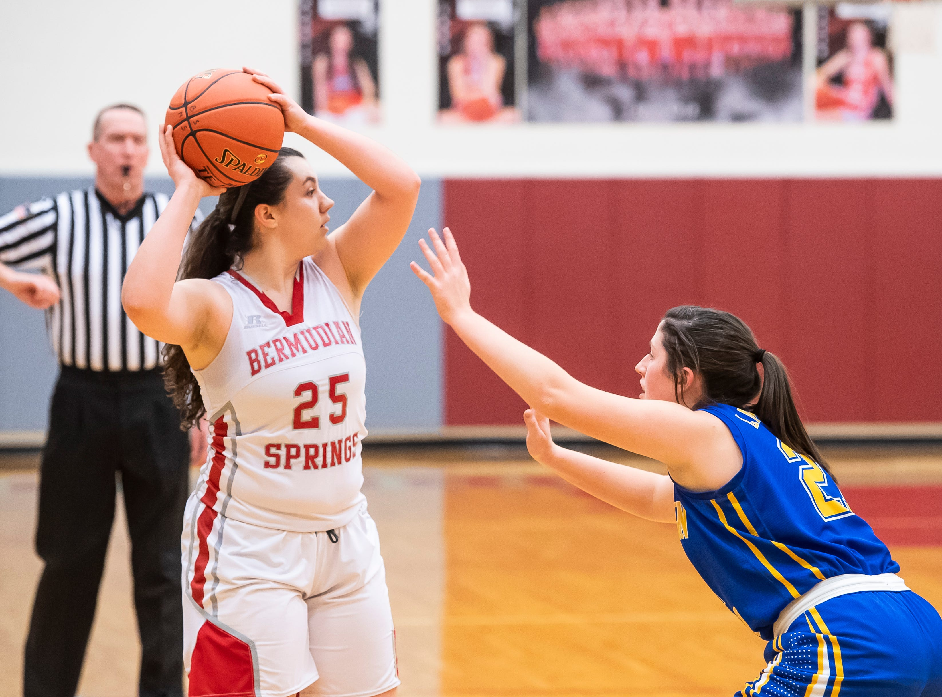 Bermudian Springs' Emily Shearer looks to pass during play against Northern Lebanon in the first round of the District III 4-A playoffs Tuesday, February 19, 2019. The Eagles won 58-52.