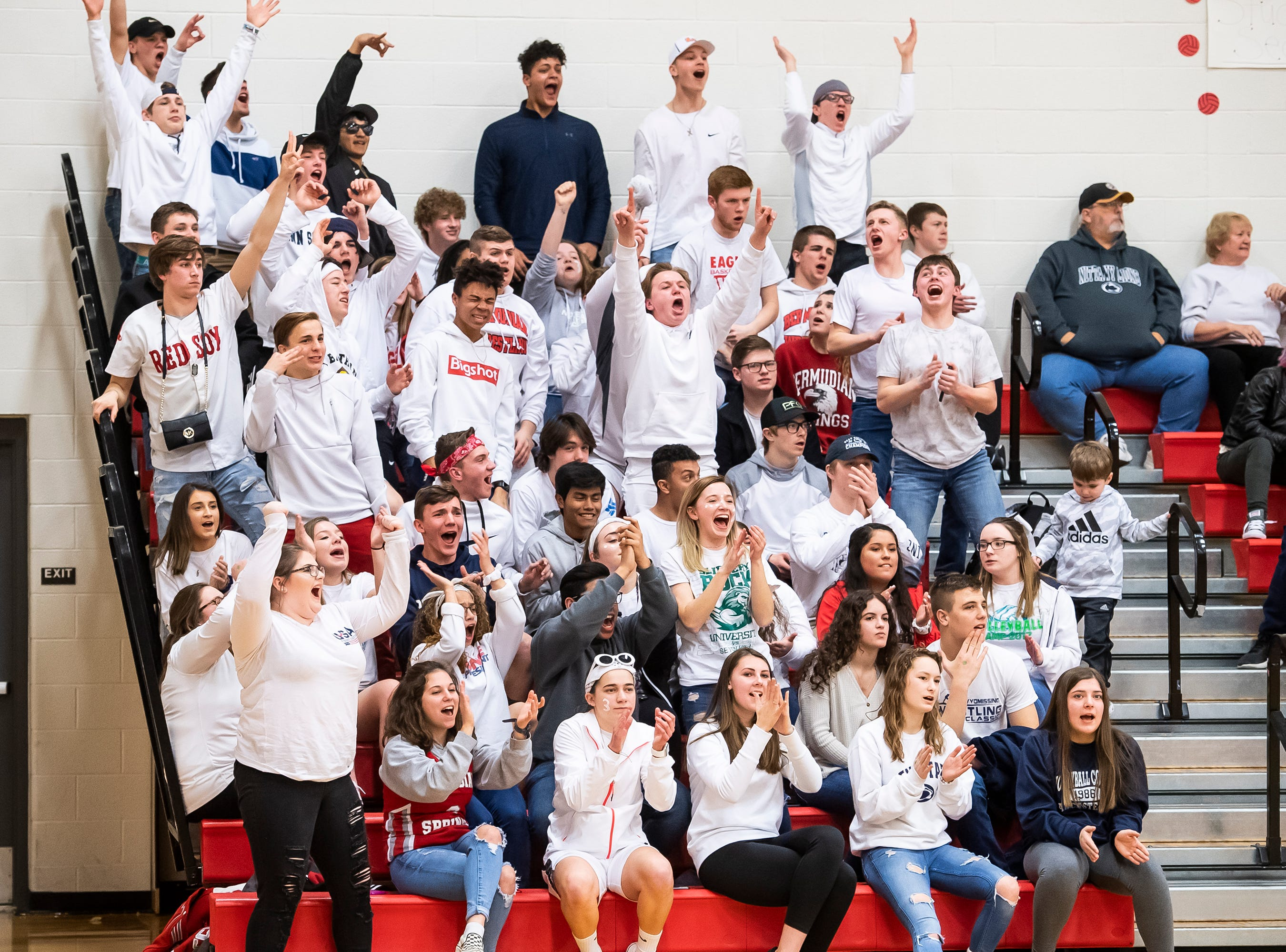 The Bermudian Springs student section cheers after the Eagles score late in the fourth quarter against Northern Lebanon. Bermudian stormed back in the second half of the game after trailing by as many as nine points.